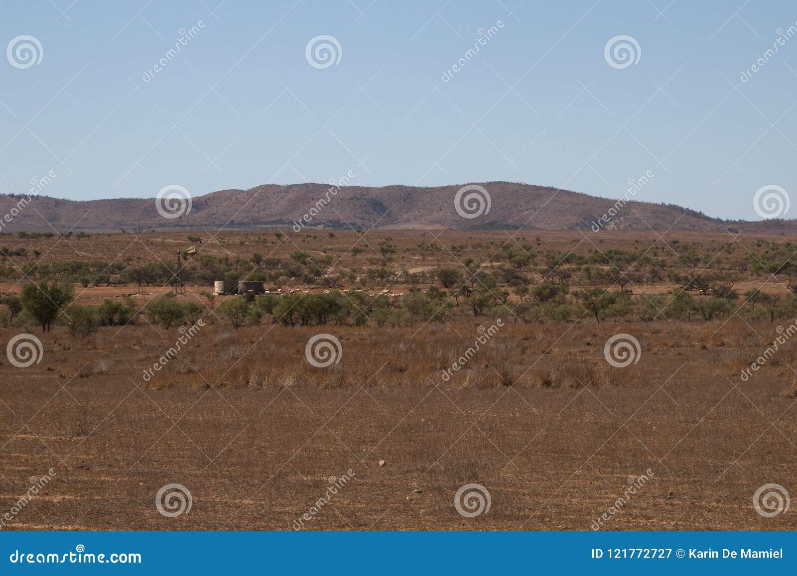 Vista panorâmica do prado com moinho de vento, tanques de água e carneiros