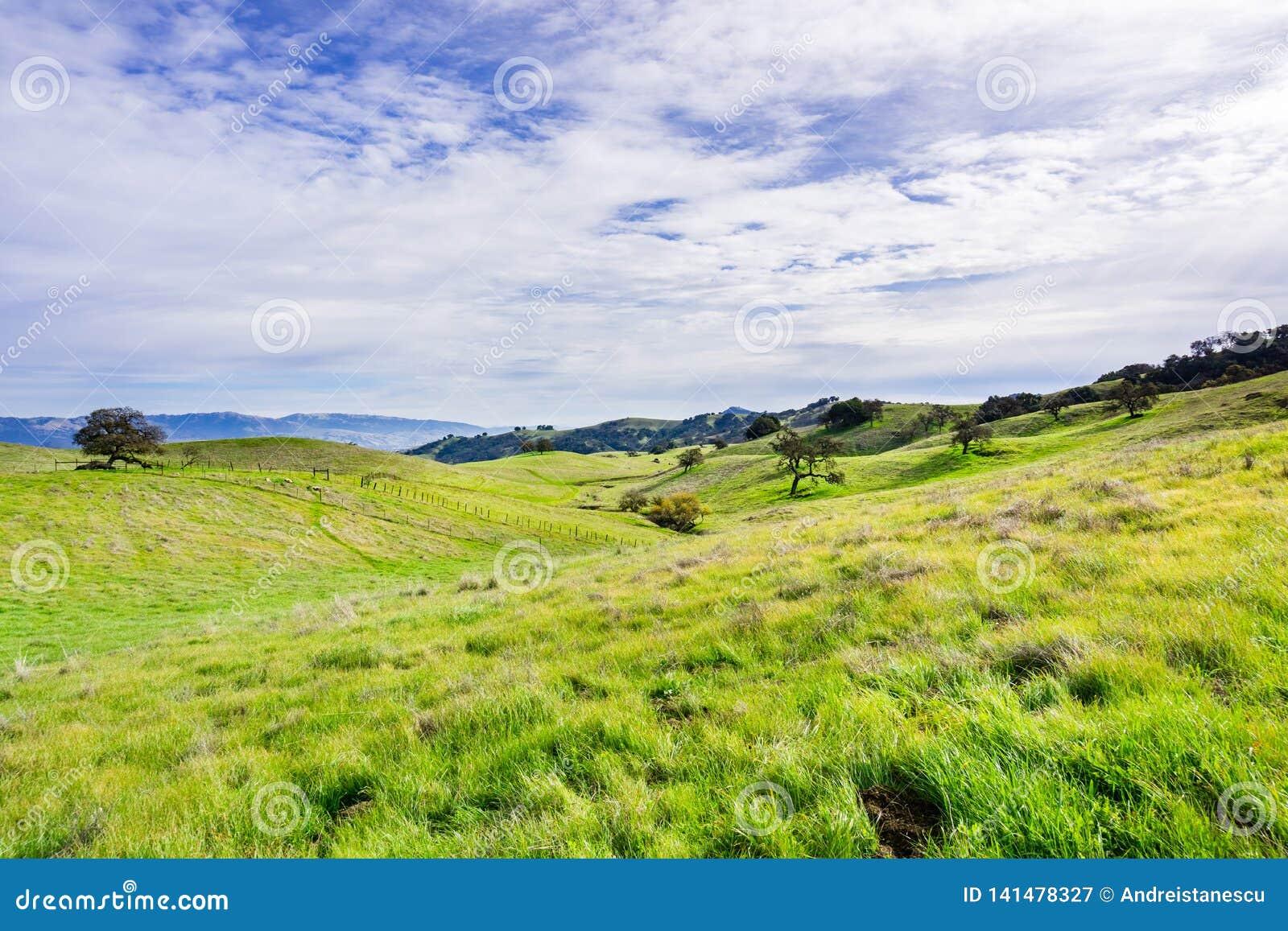 Vista panorâmica sobre os montes e o vale da conserva do espaço aberto do vale do chacal, Morgan Hill, área de San Francisco Bay