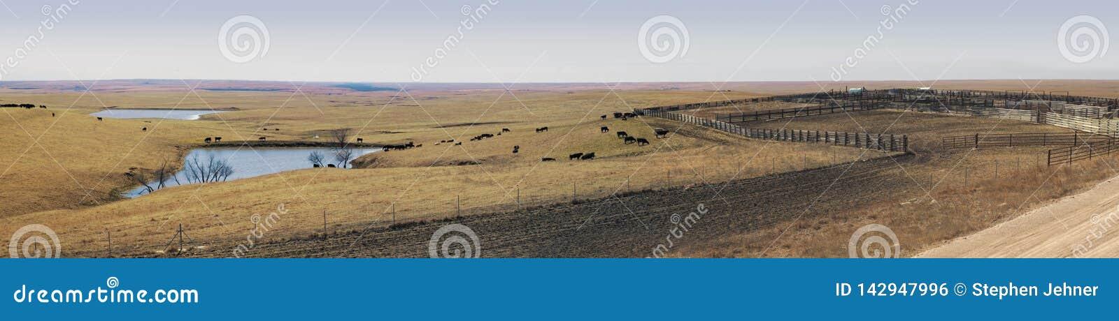 Vista panorâmico do ranching da Grandes Planícies