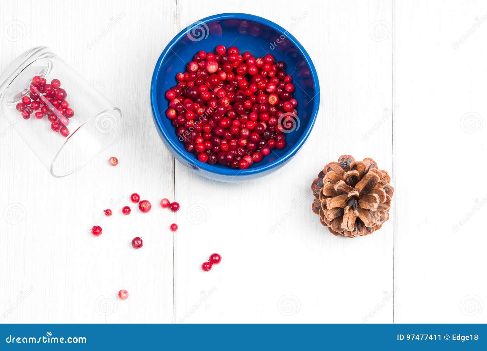 Vista piana superiore: mirtilli rossi sulla superficie di bianco