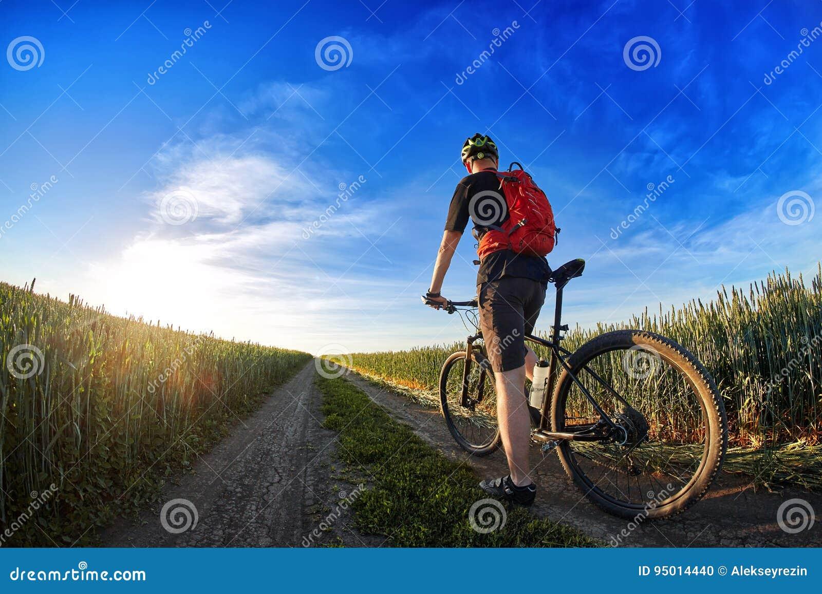Vista posterior de la bici de montaña del montar a caballo del ciclista en el rastro contra el cielo hermoso