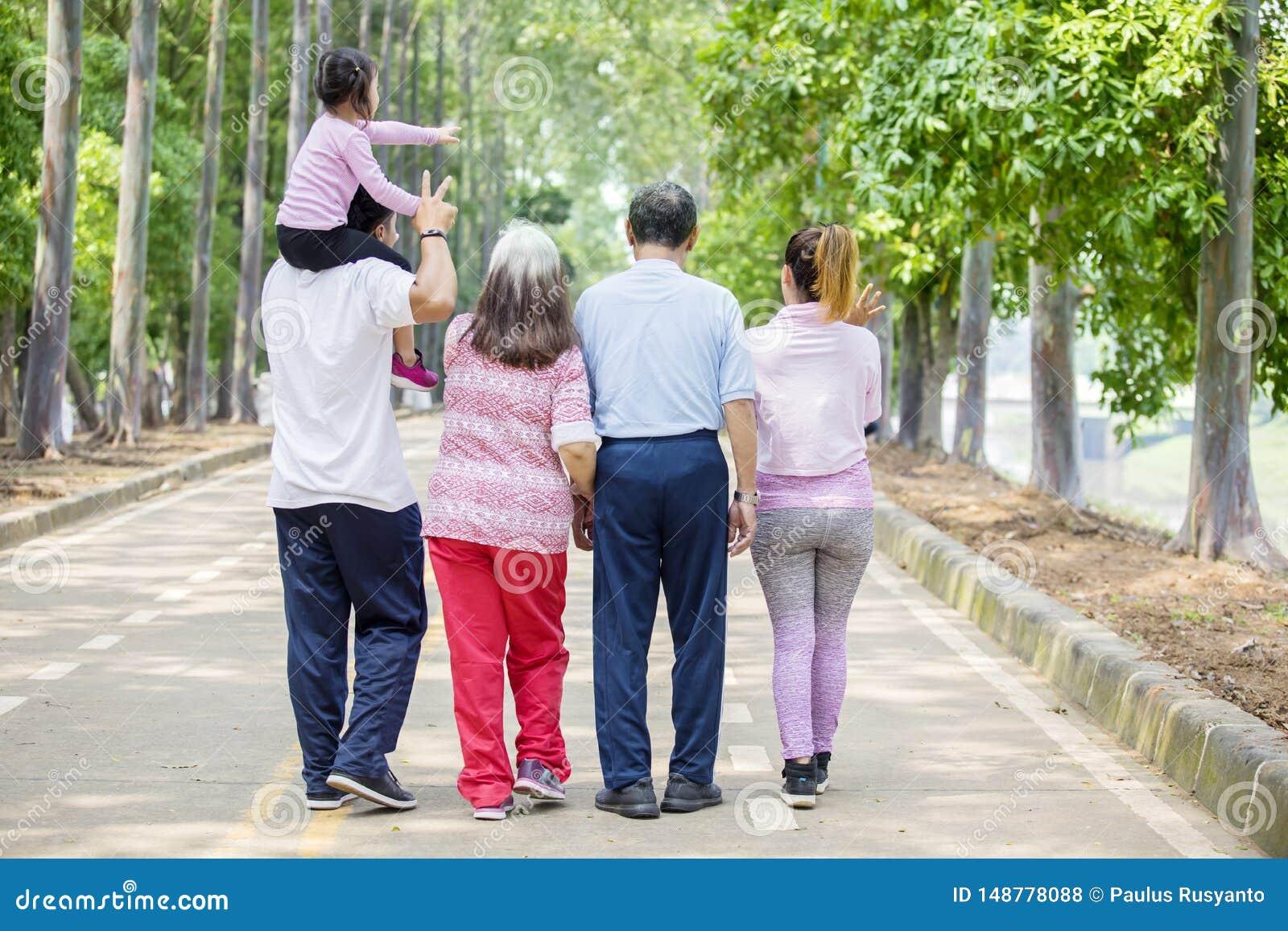 Vista posterior de la familia extensa que camina en el camino