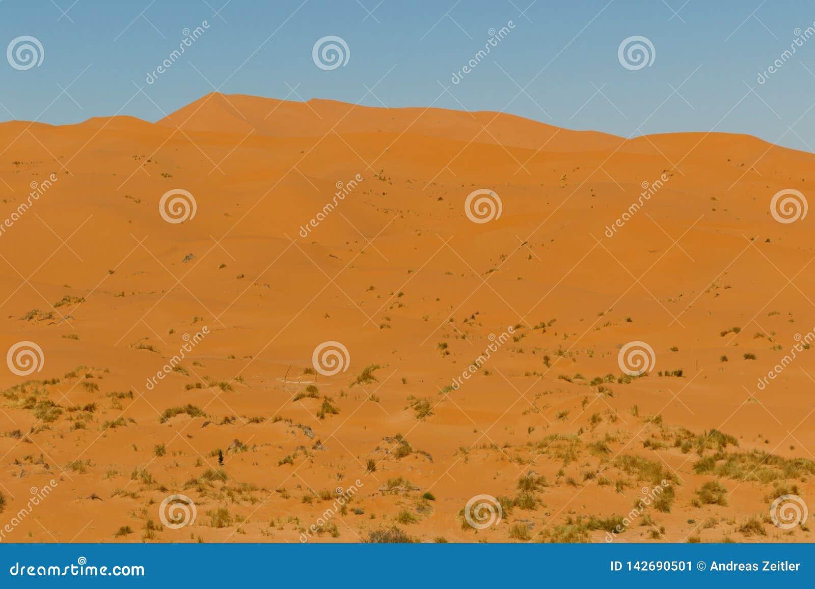 Vista que sorprende de las grandes dunas de arena en Sahara Desert, ergio Chebbi, Merzouga, Marruecos