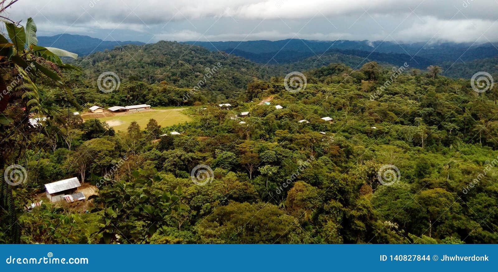 Vista regional de cabanas nativas em uma comunidade profundamente no amazone, Equador