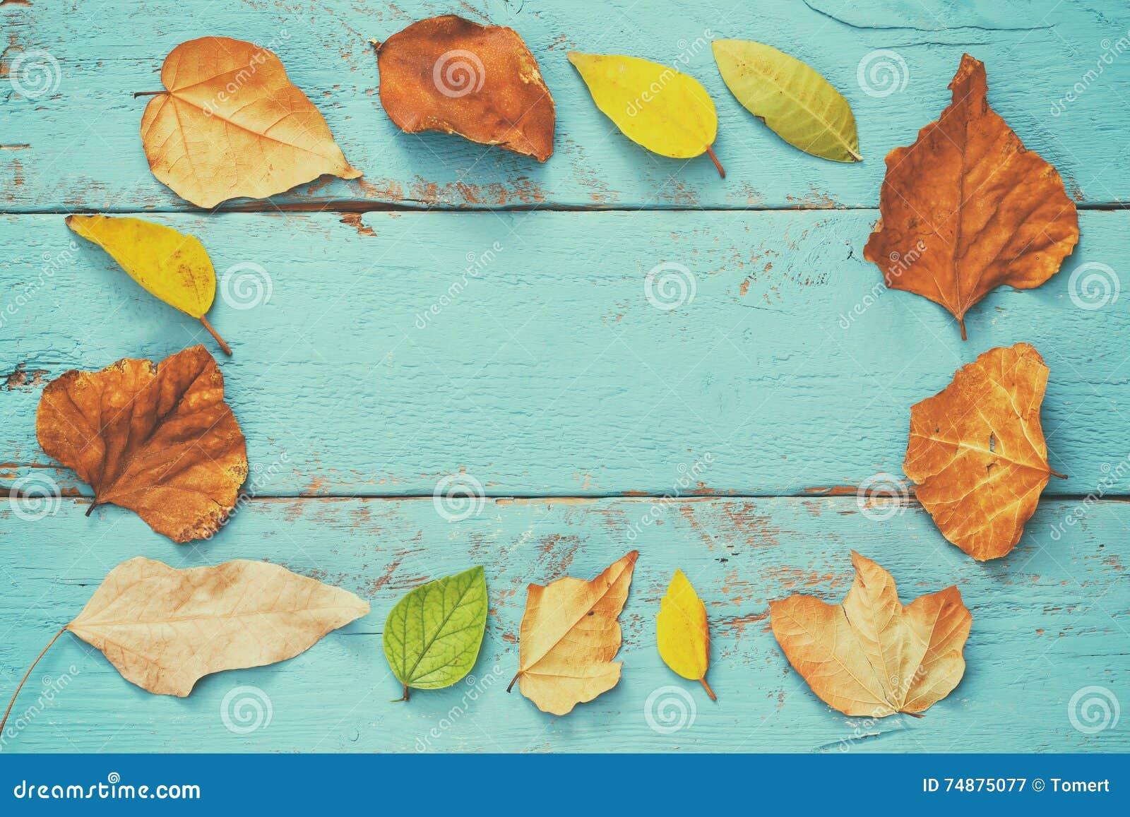 Vista superior das folhas douradas do outono no fundo de madeira azul