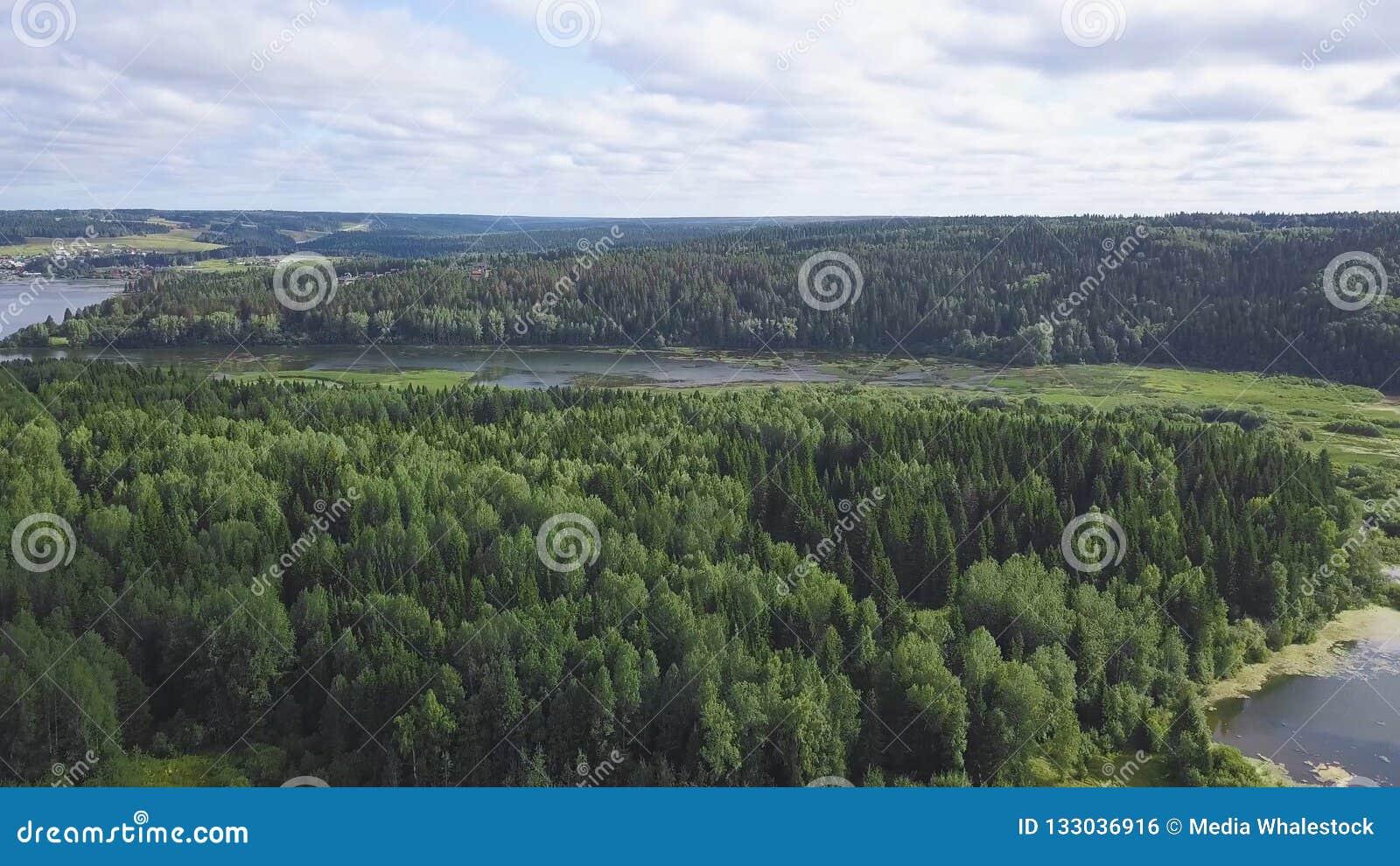 Vista superior de casas en orilla del lago en clip del bosque Tranquilidad y retraimiento Vacaciones fuera de la ciudad Cabañas c