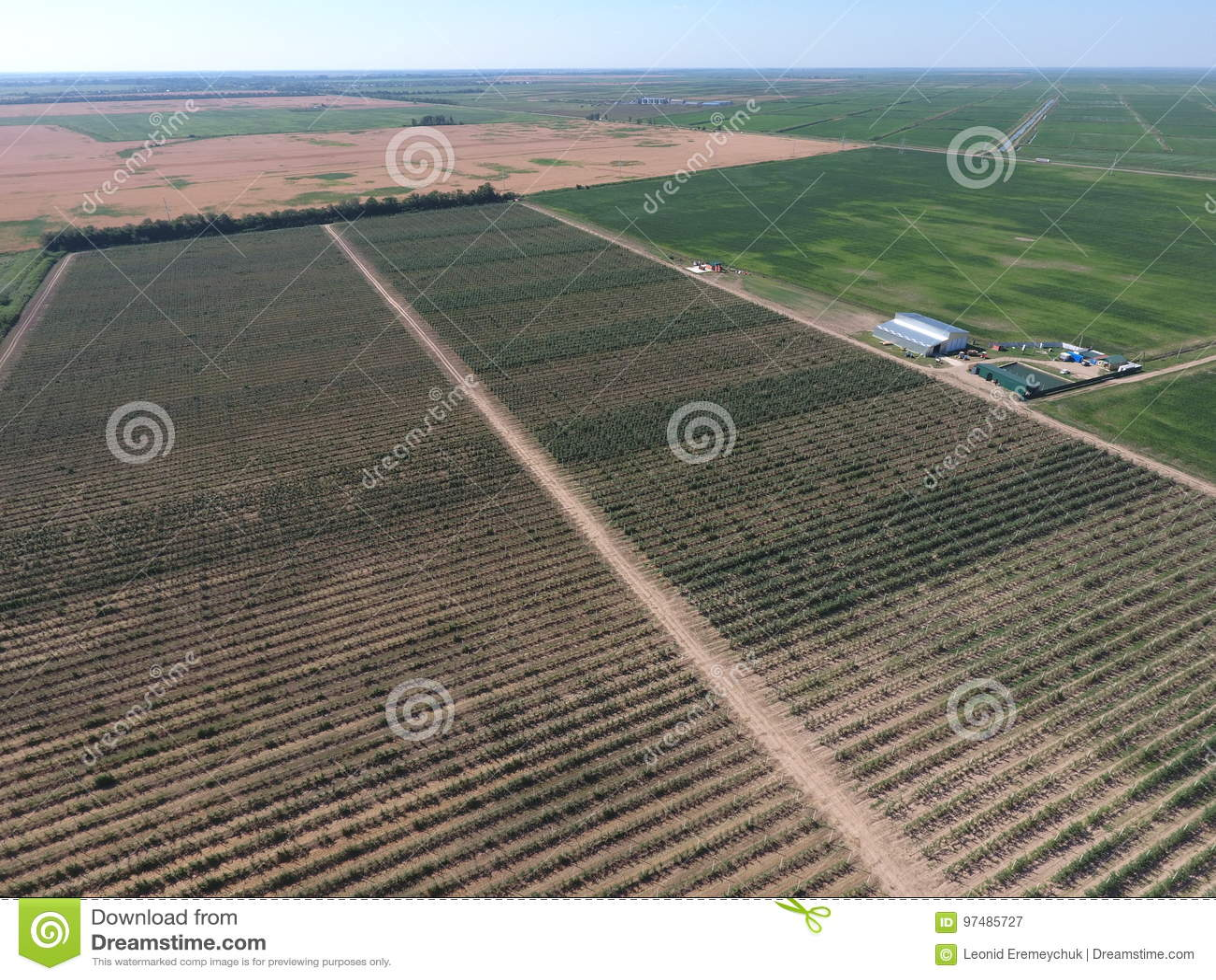 Vista superiore del giardino di di melo nani