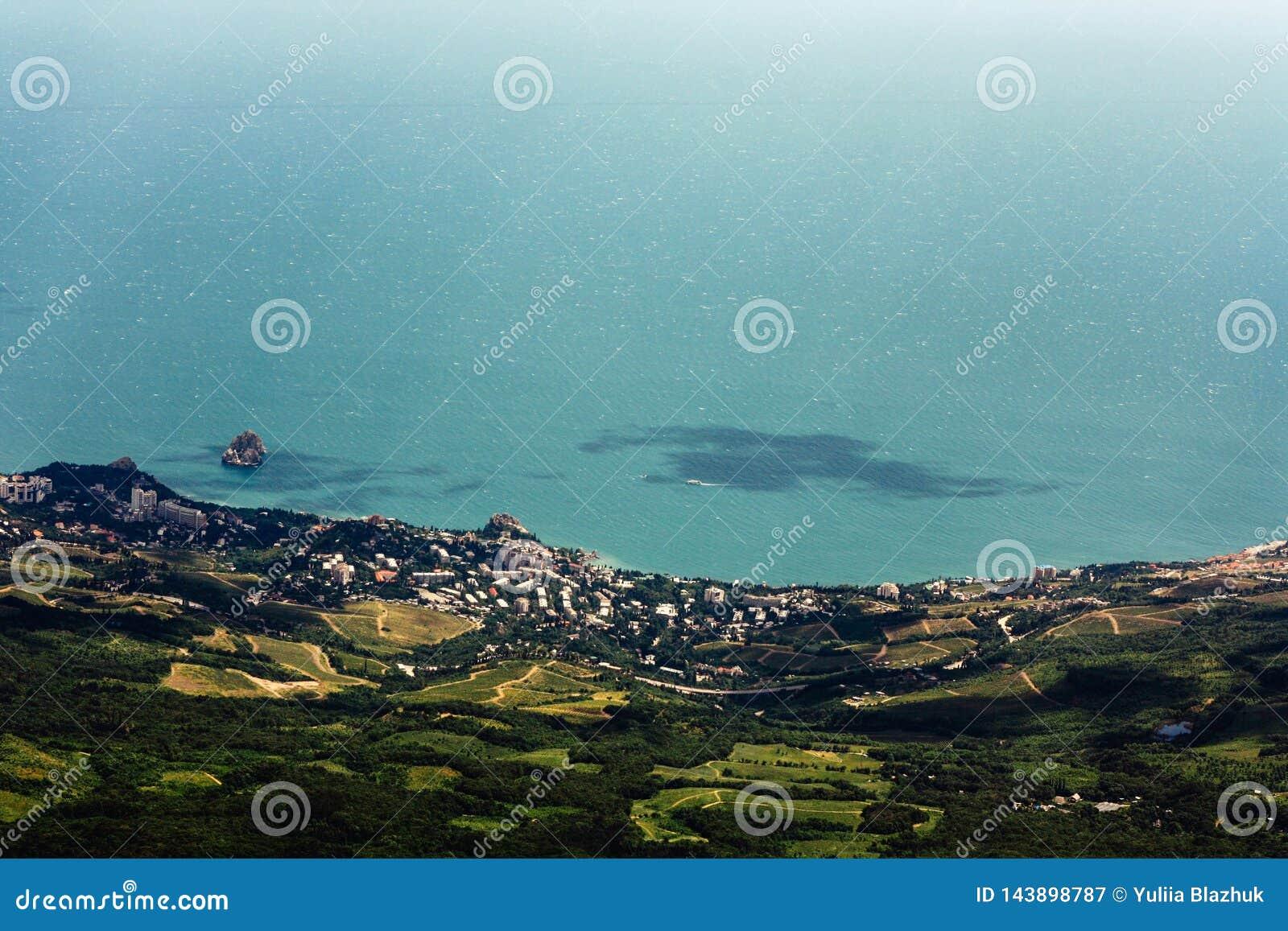 Vista superiore della costa di mare con la foresta, le costruzioni ed acqua blu