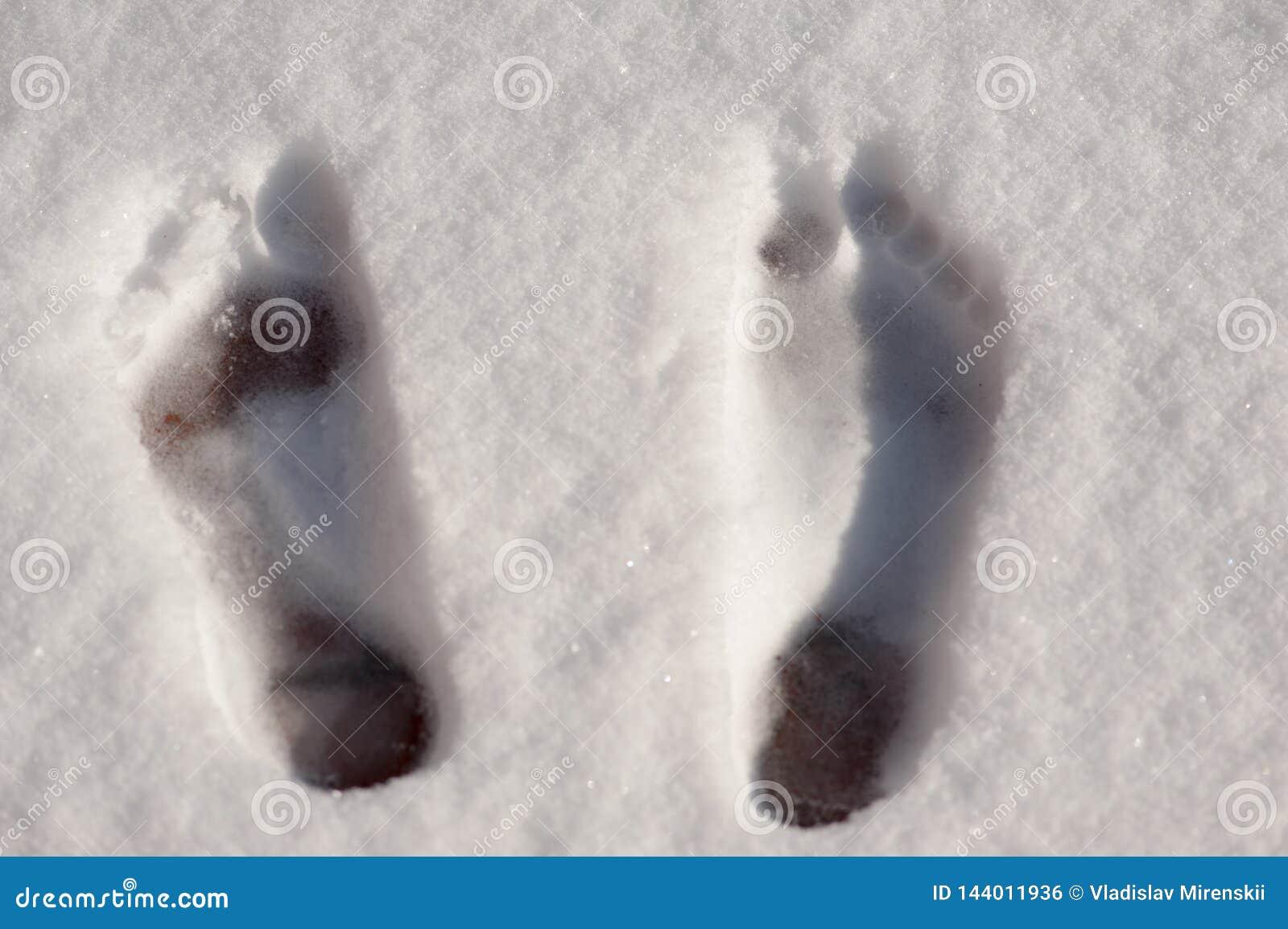 Vista superiore delle stampe del piede nudo nella neve