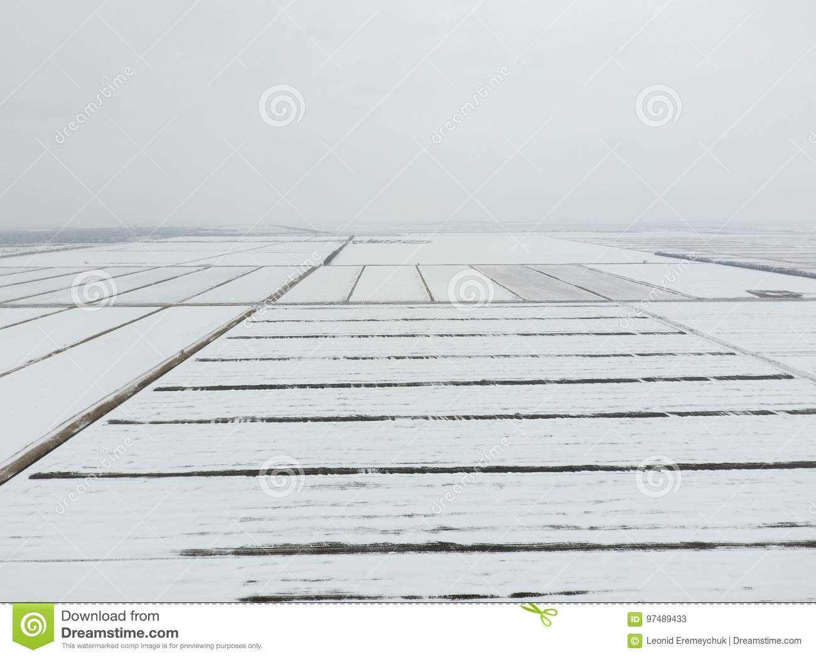Vista superiore di un campo arato nell inverno Un campo di grano nella neve