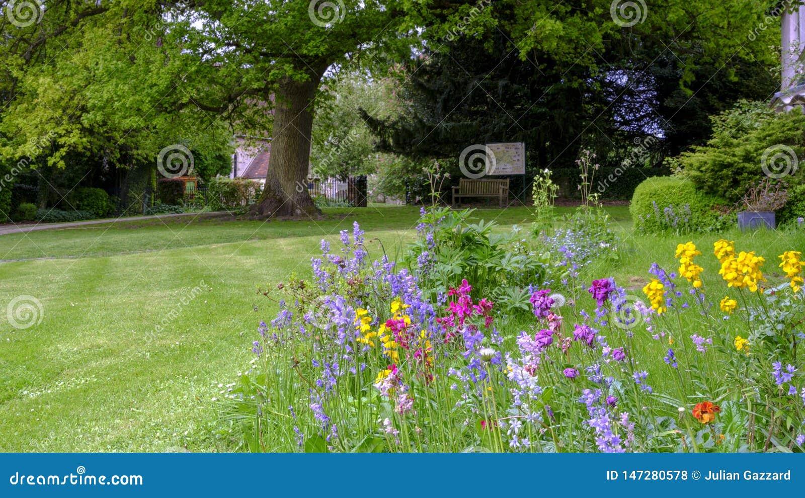 Vista verso la chiesa di St Mary attraverso i letti di fiore selvaggio ed il prato inglese della Camera di Pleistor in Selborne,