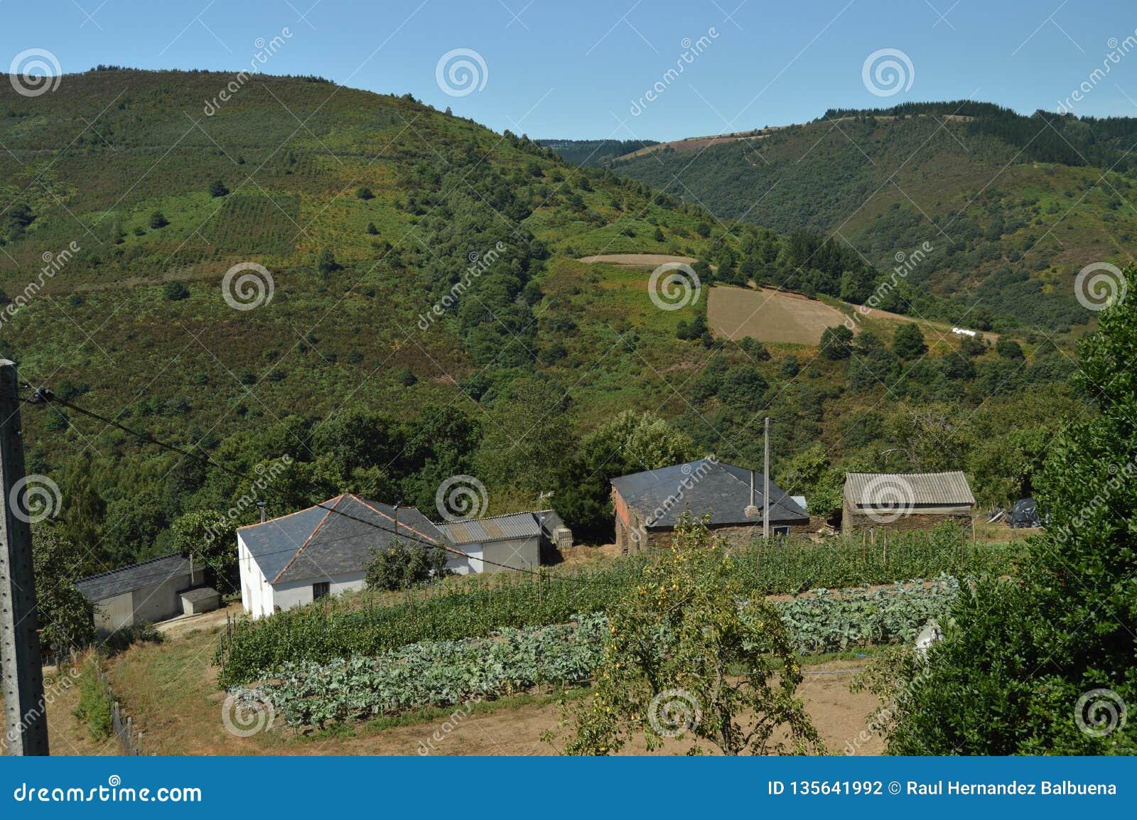 Vistas aéreas hermosas del pueblo de Villardoi en el campo de Galicia Naturaleza, paisajes, botánica, viaje 2 de agosto de 2015