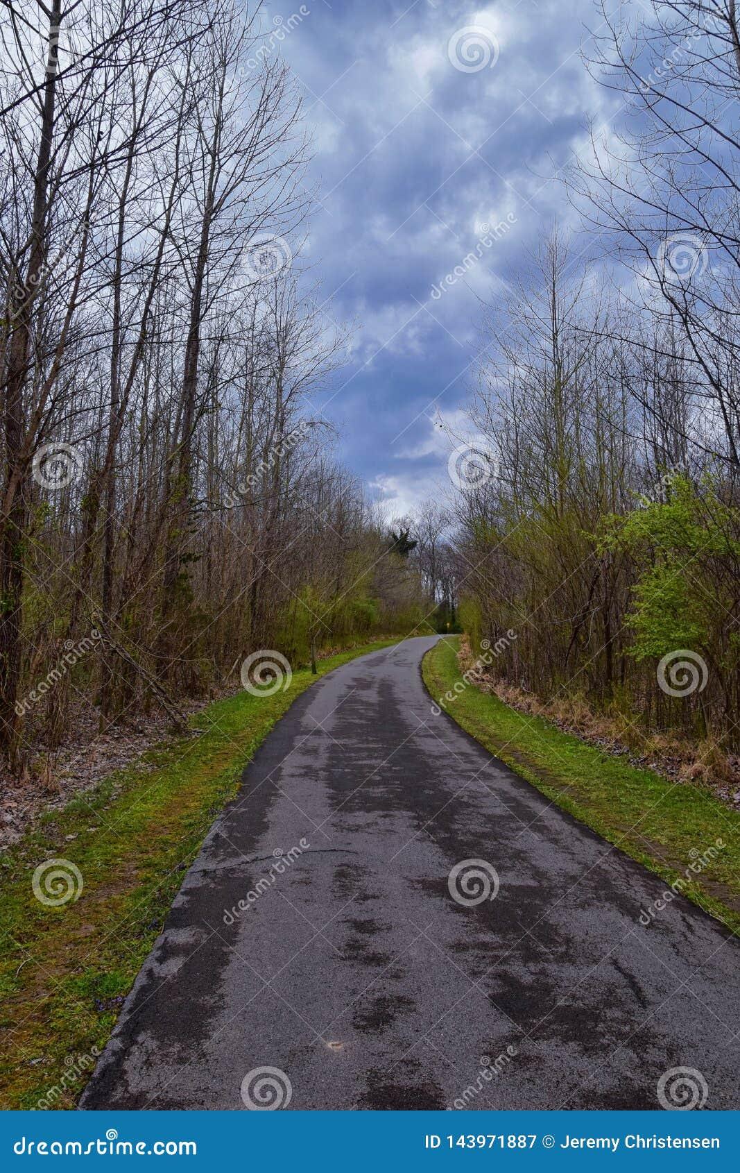 Vistas de la naturaleza y de caminos a lo largo de Shelby Bottoms Greenway y de los rastros naturales del ataque frontal del río