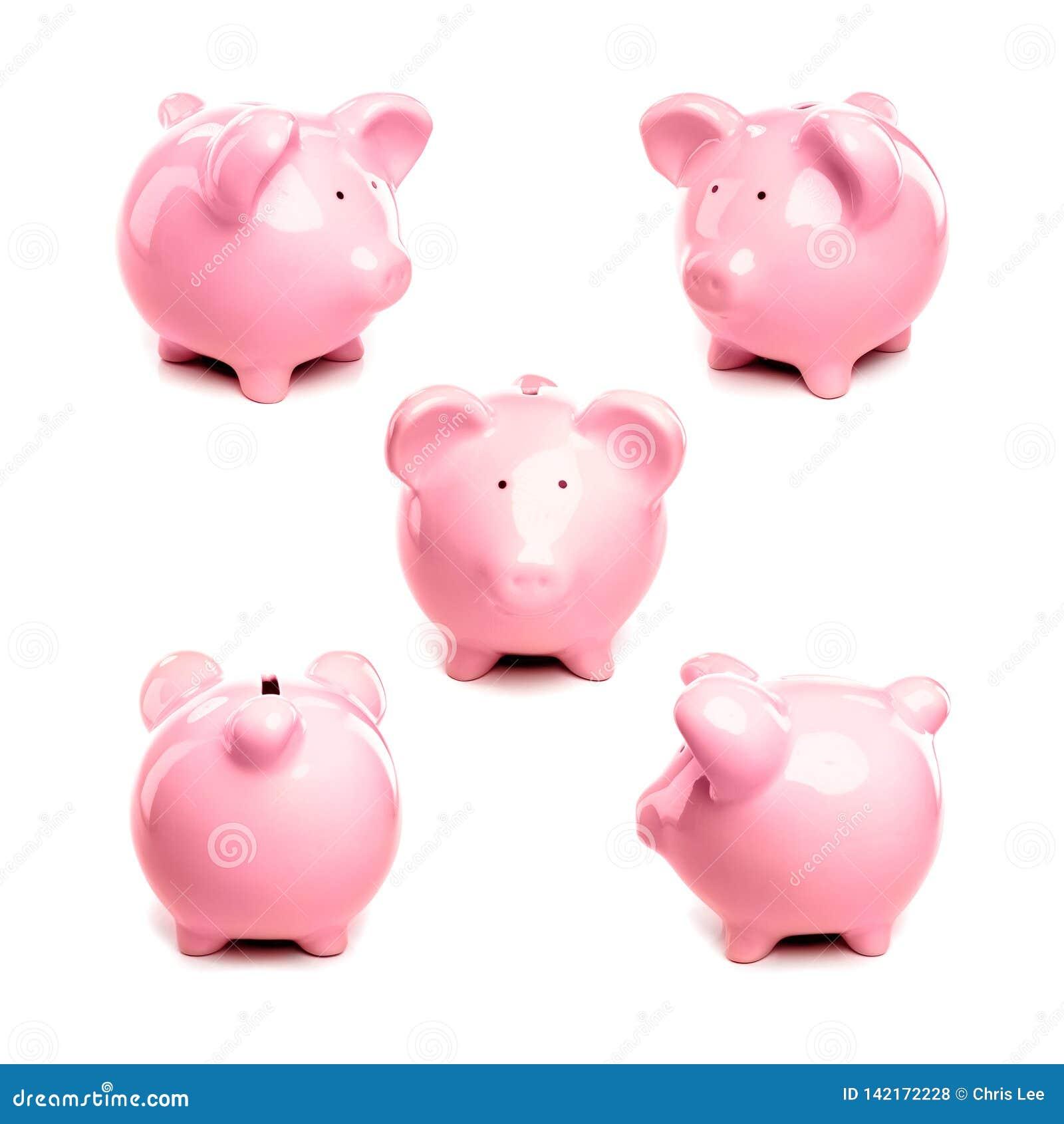 Vistas diferentes do banco leitão cor-de-rosa do porco no fundo branco