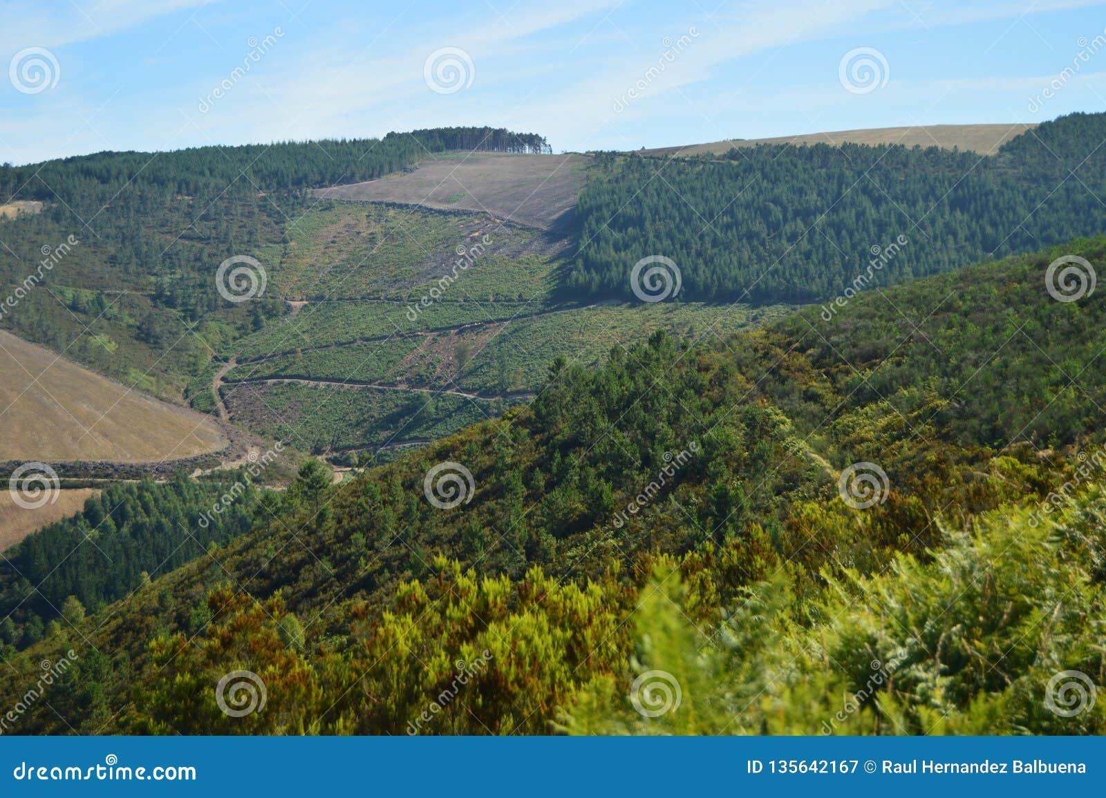 Vistas maravilhosas das montanhas nos limites do SE do fundo com as Astúrias no campo de Galiza Natureza, paisagens,