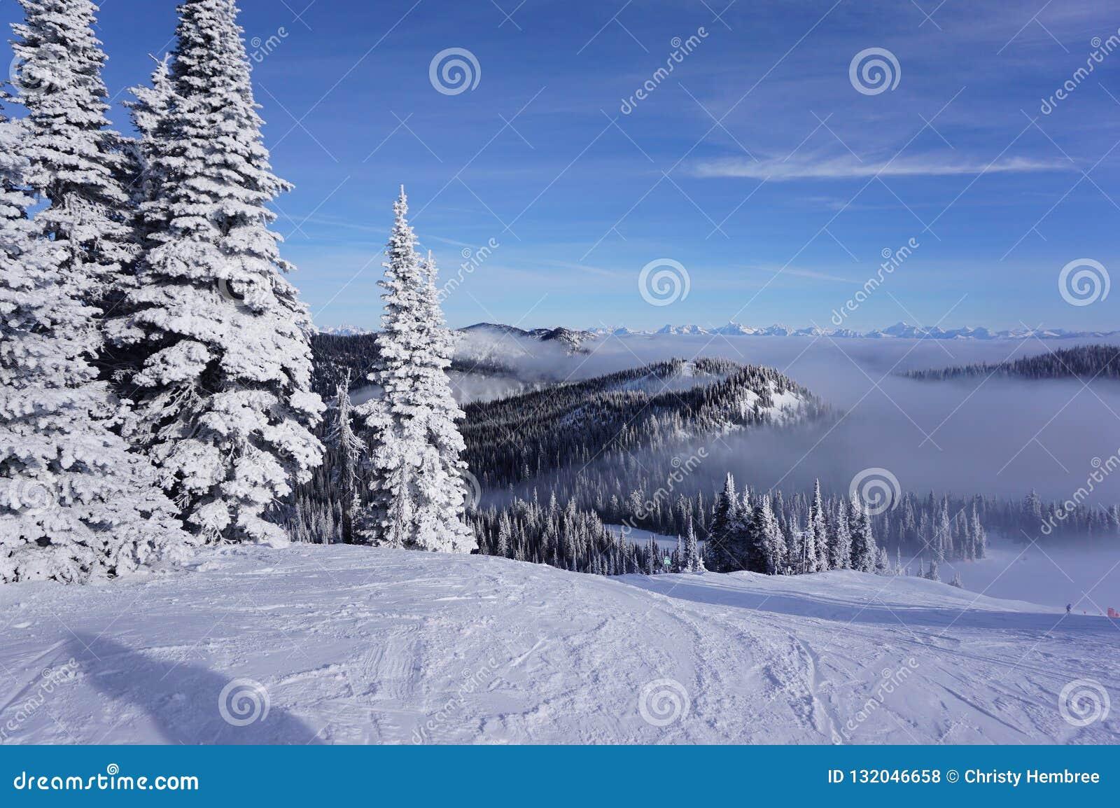 Viste di cielo degli sciatori: Giorno dell uccellino azzurro della località di soggiorno di montagna del coregone