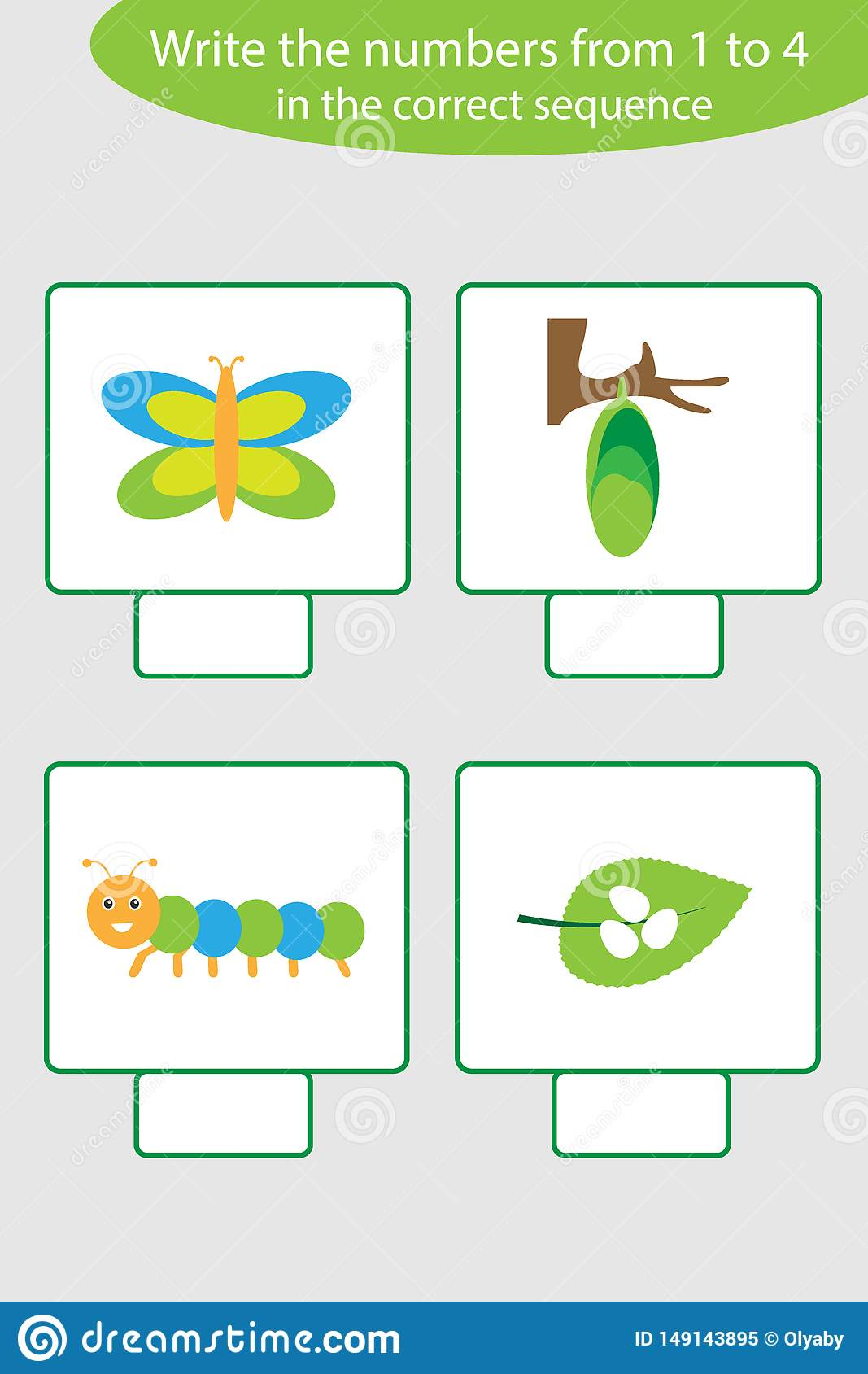 The Life Cycle Of A Butterfly Cartoon Vector