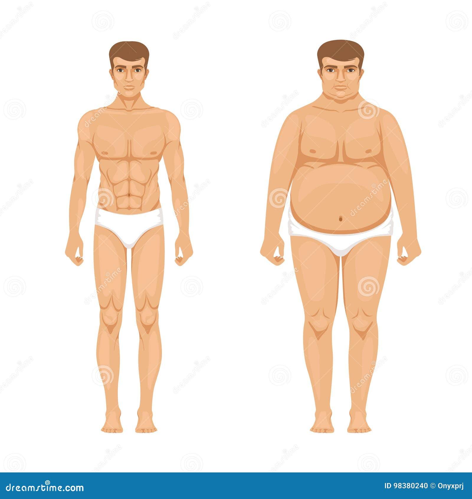 Visualizacao Da Perda De Peso Homem Muscular E Gordo Ilustracao