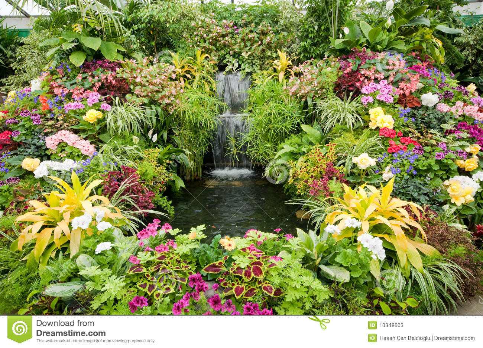 Visualizzazione del fiore ai giardini di butchart immagine for Giardino fiori