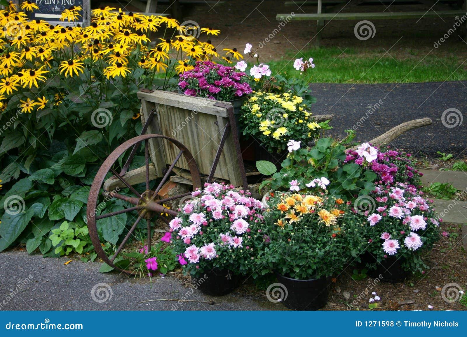 Visualizzazione del giardino di fiore con la carriola for Giardino con fiori