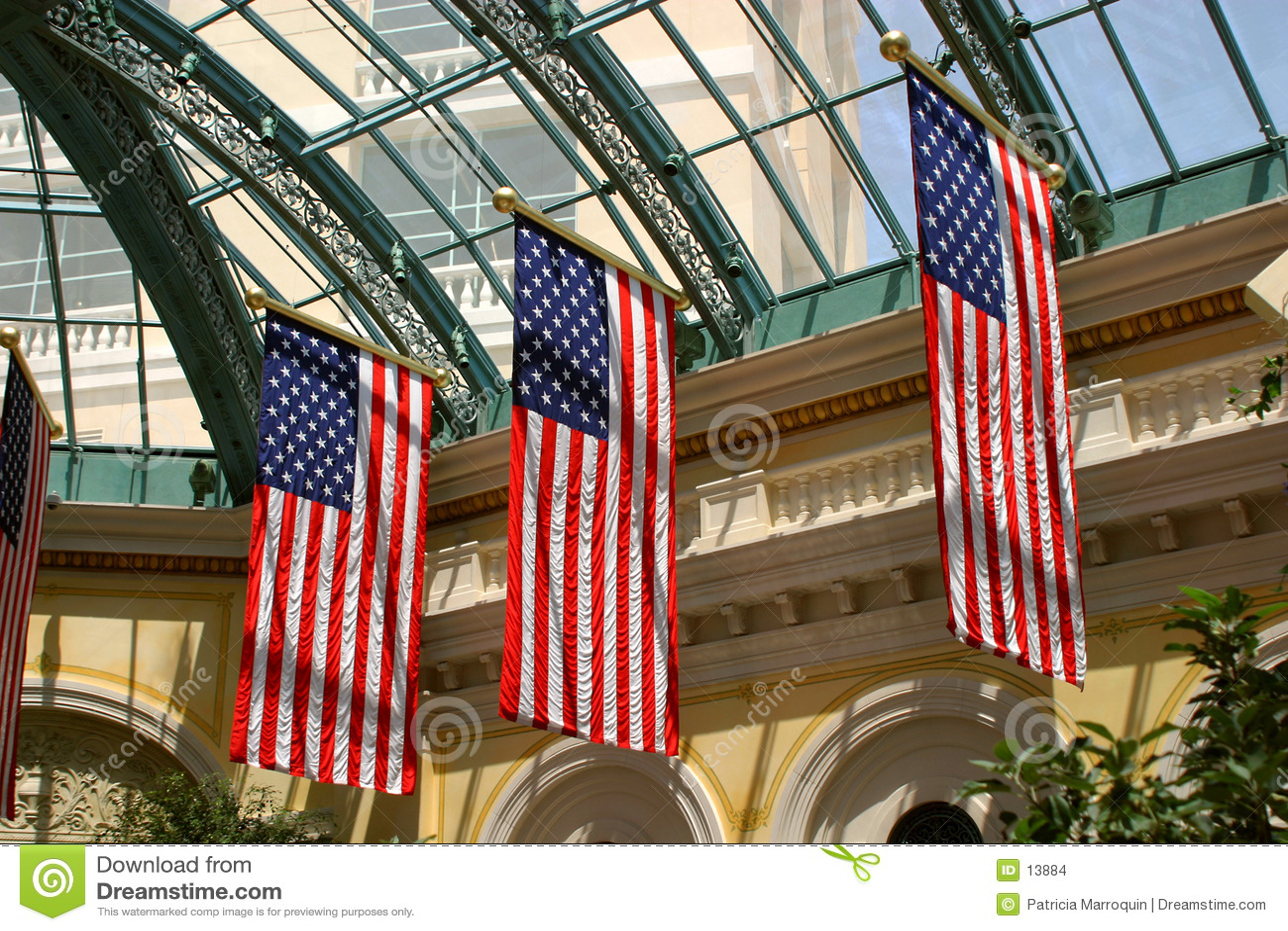 Visualizzazione patriottica