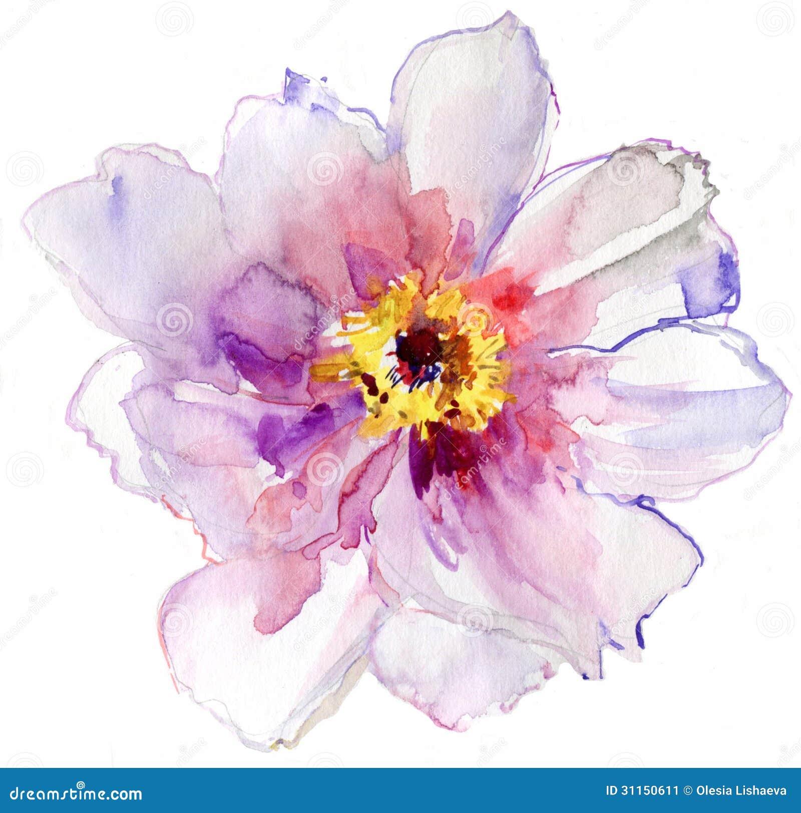 Vit blomma för vattenfärg