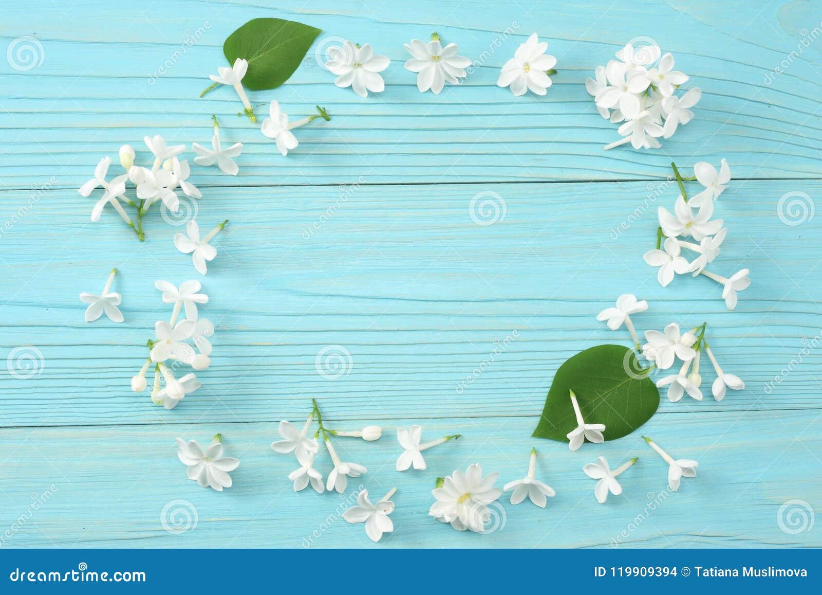 Vit lila blomma på blå träbakgrund Bästa sikt med kopieringsutrymme