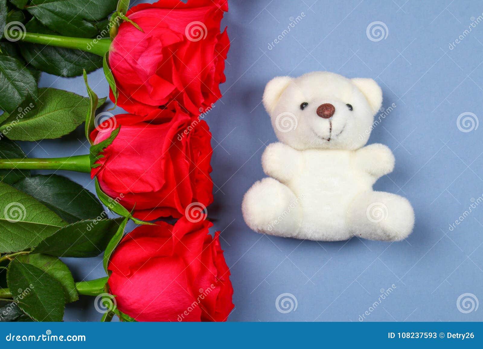 Vit nallebjörn som omges av rosa rosor på en grå tabell Mall för mars 8, mors dag, valentin dag