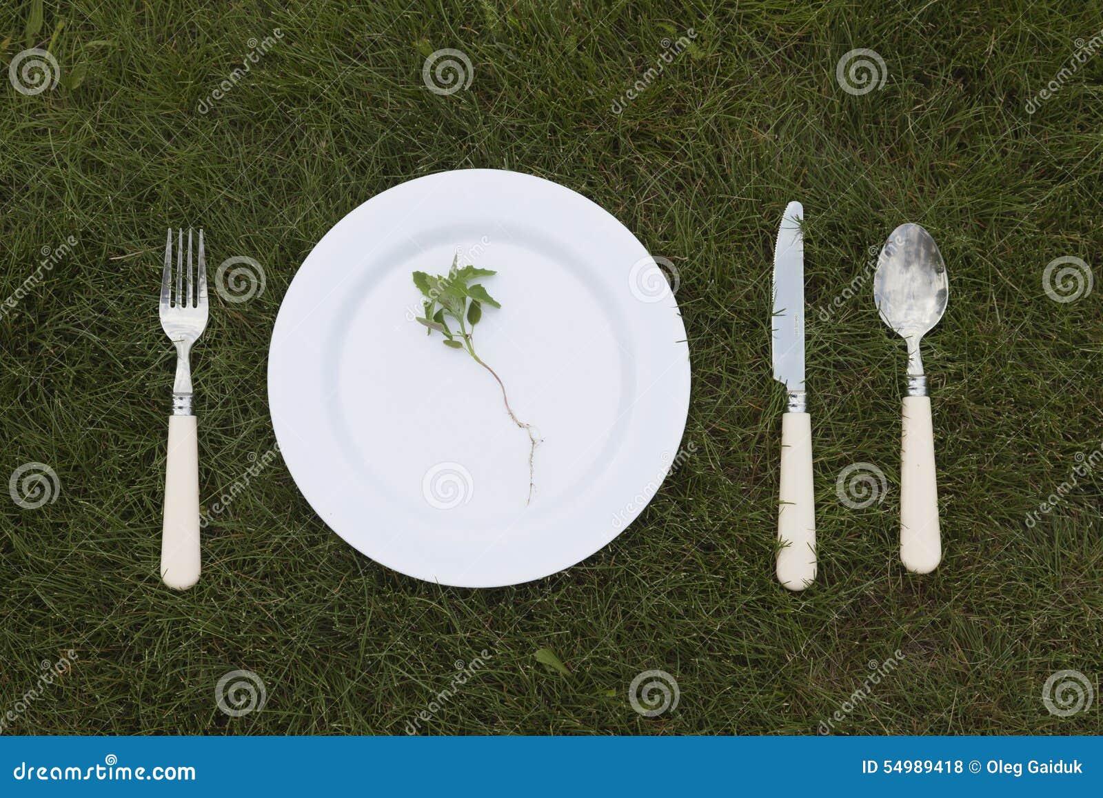 Vit platta på gräs