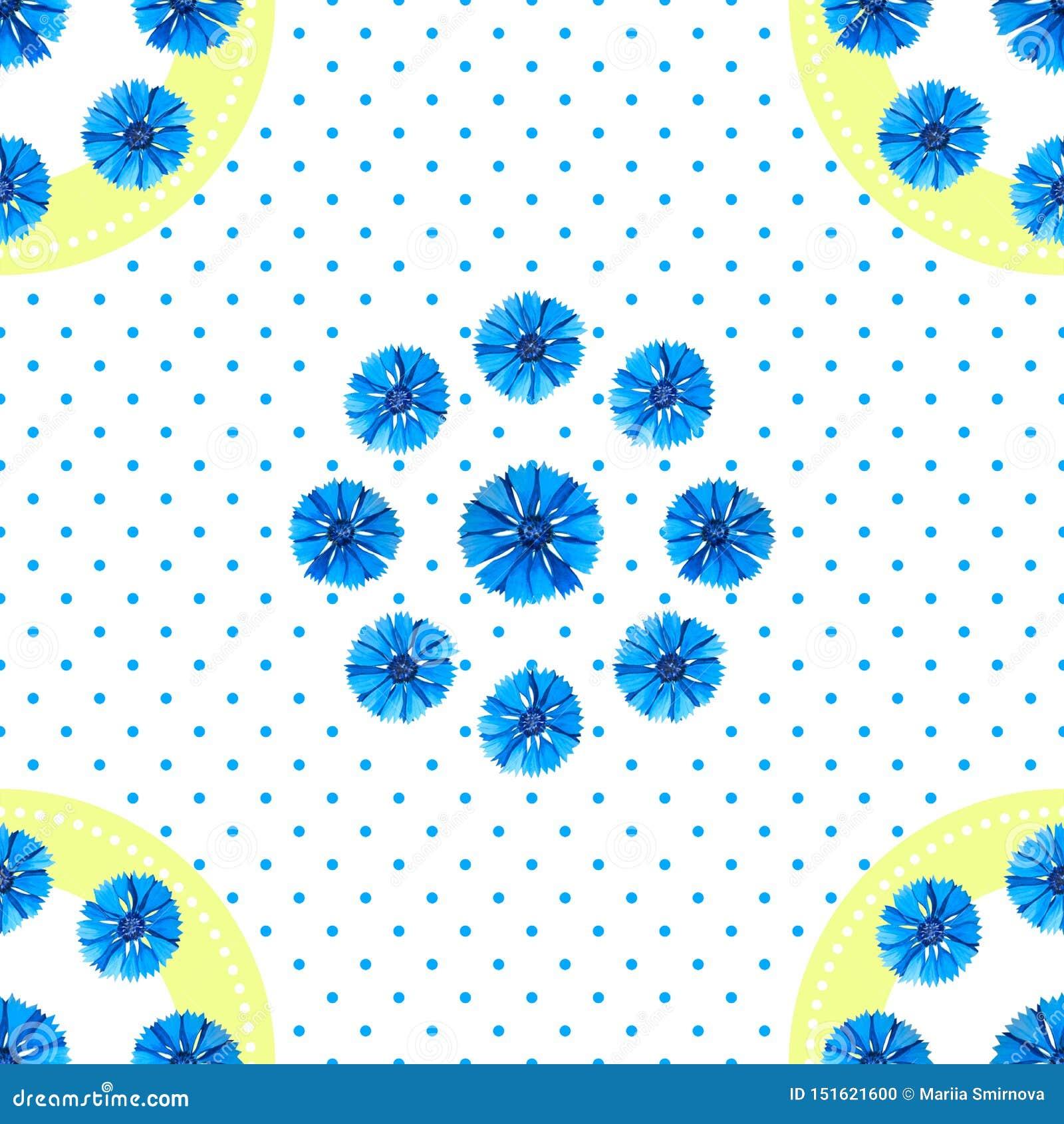 Vit s?ml?s modell med bl?a blommor Vattenfärgblåklinter, prickbakgrund