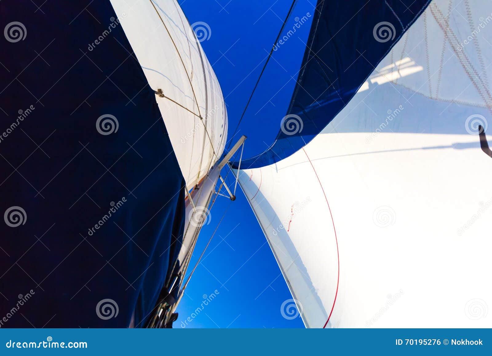 Vit seglar blå himmel