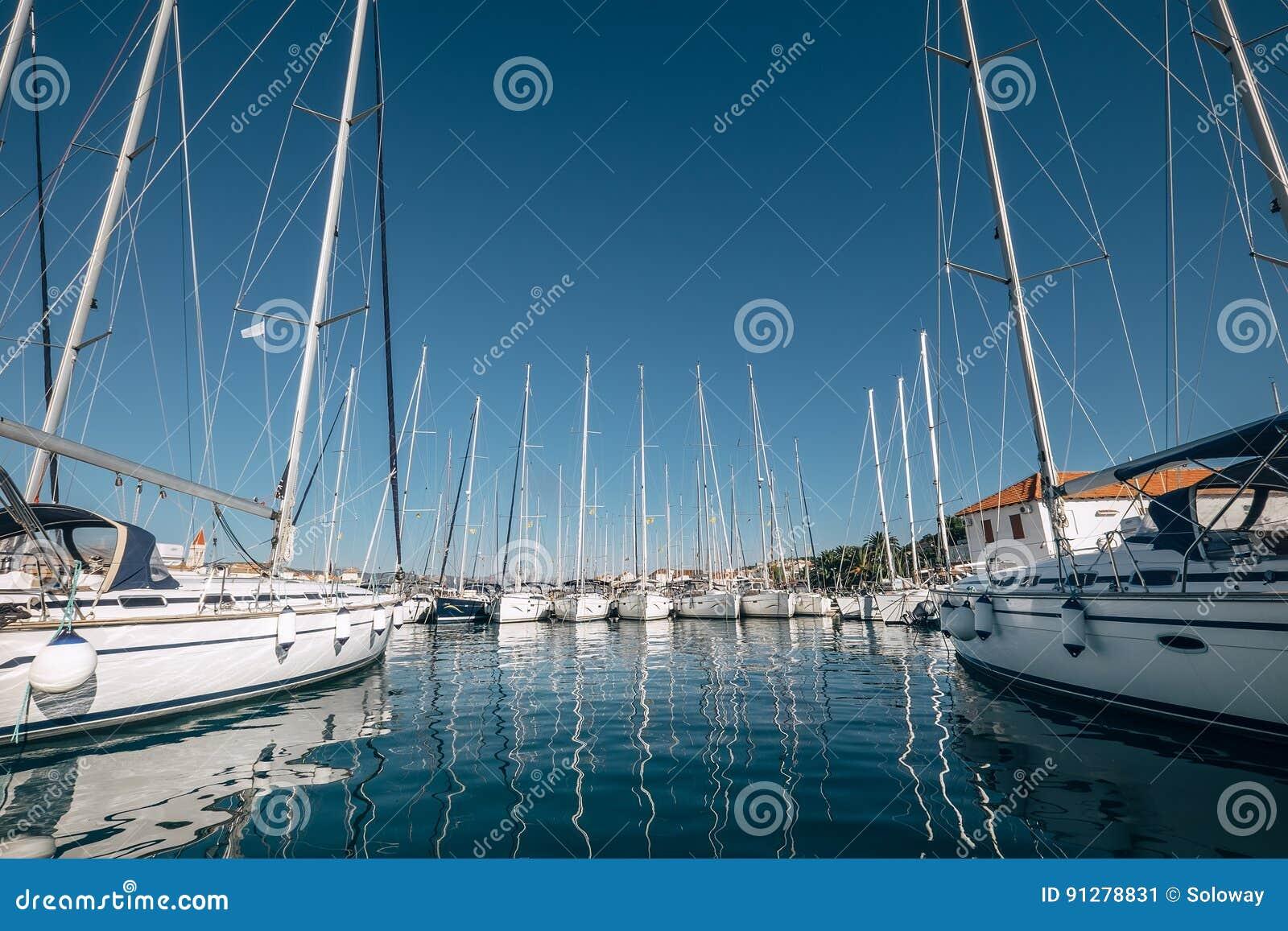 Vit seglar i fjärden