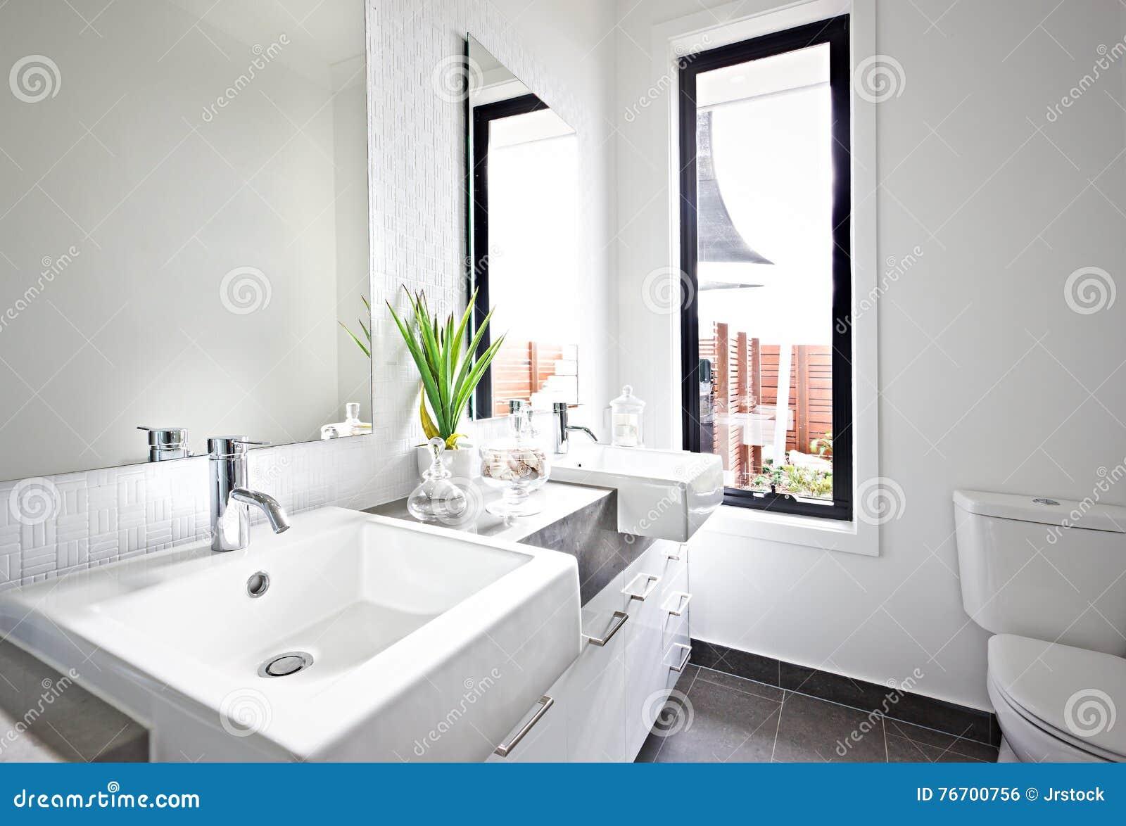 Vit toalettvask och spegel nära en grön växt