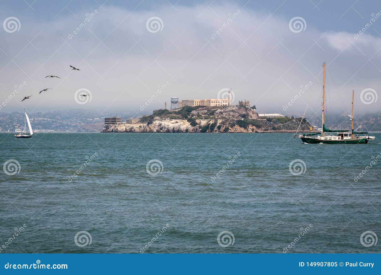 Vita della baia e navigazione San Francisco