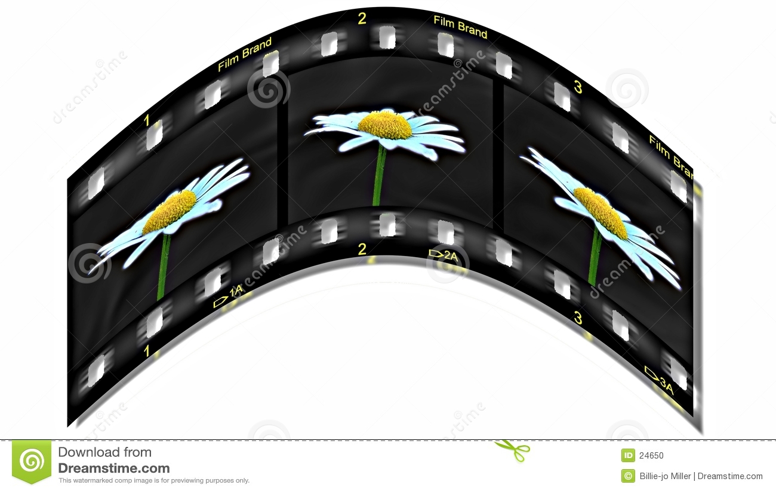 Vita sulla pellicola
