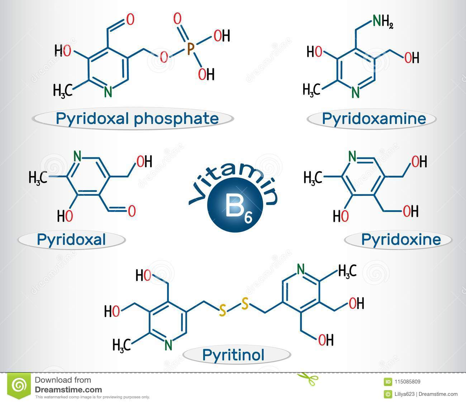 Vitamin B6 Pyridoxal Phosphate Pyridoxamine Pyridoxal Pyri Stock