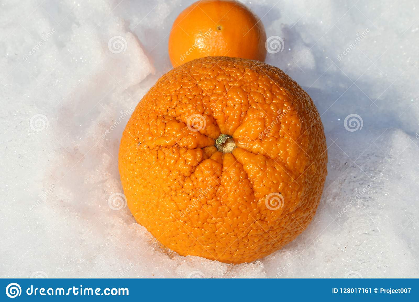 Vitamin C- Oranges And Cold And Flu Season Story Stock Image