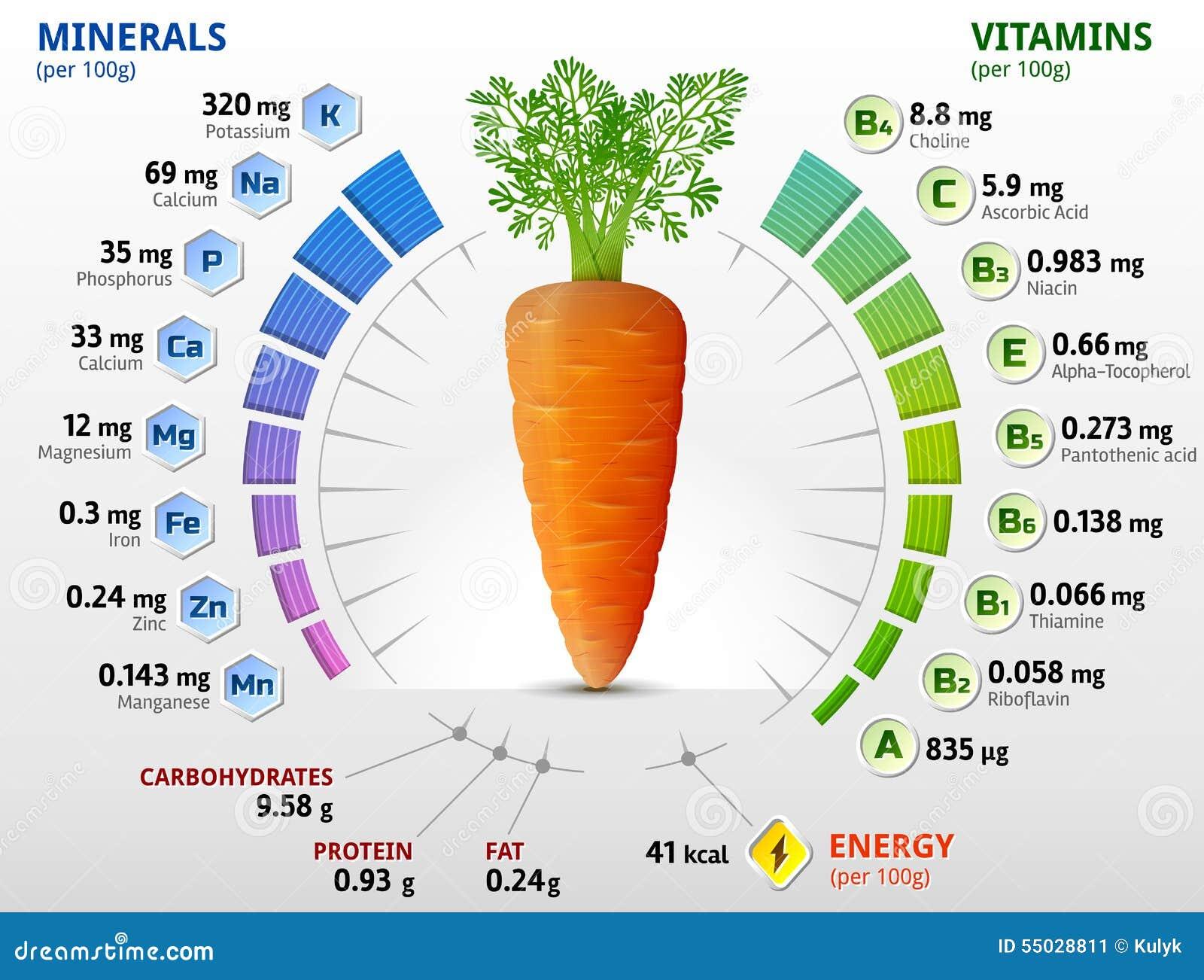 Vitaminas y minerales del tub rculo de la zanahoria for La zanahoria es una hortaliza