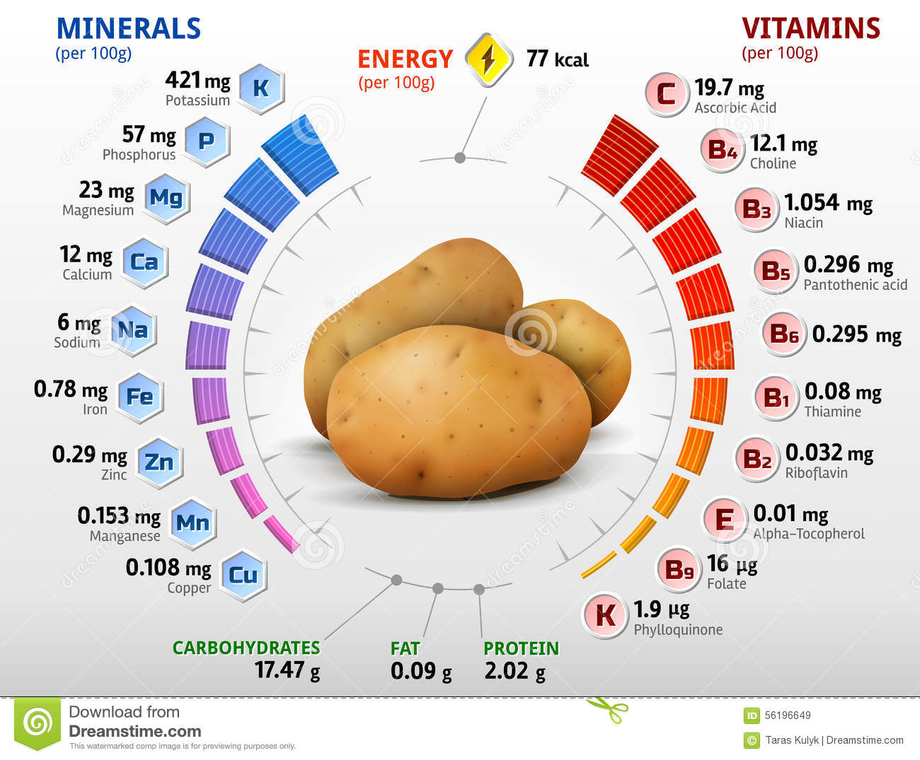 Vitamins And Minerals Of Potato Tuber Stock Vector