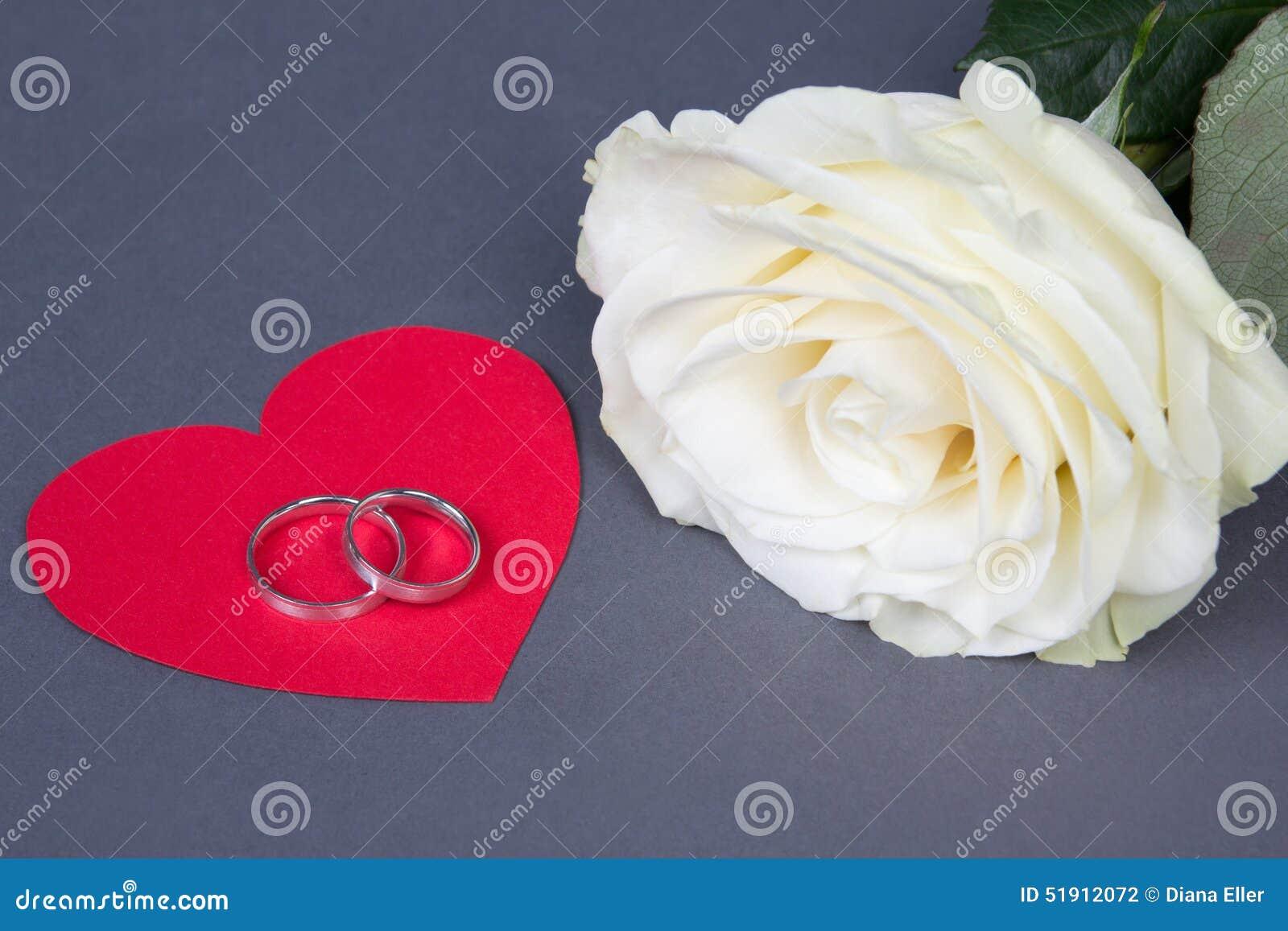Vitrosblomma och vigselringar på röd hjärta över grå färger