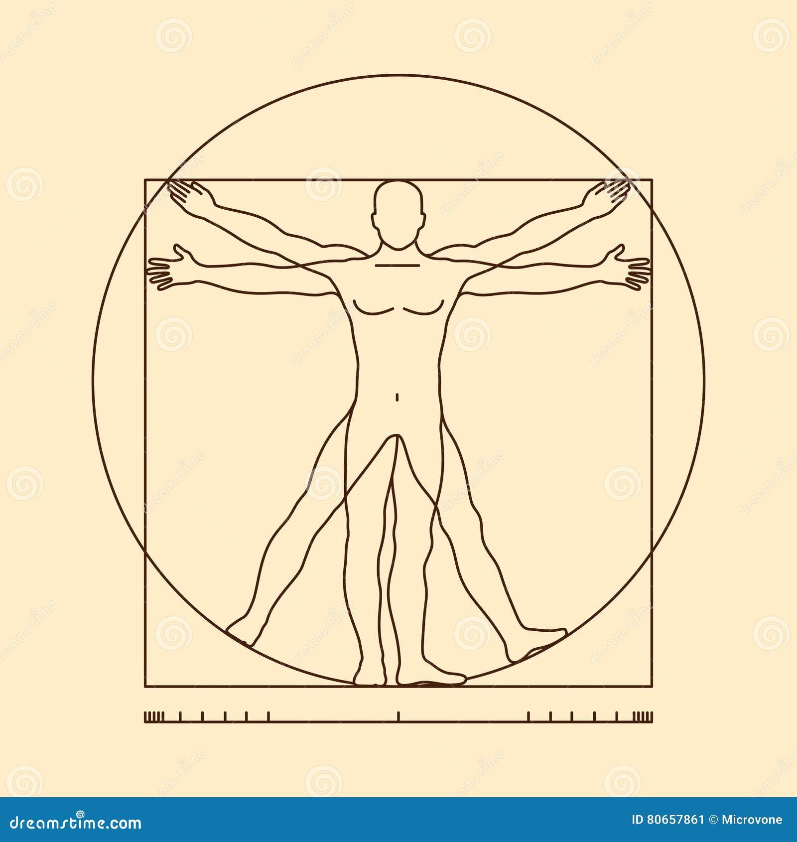 Vitruvian de mensen vectorillustratie van Leonardo da Vinci