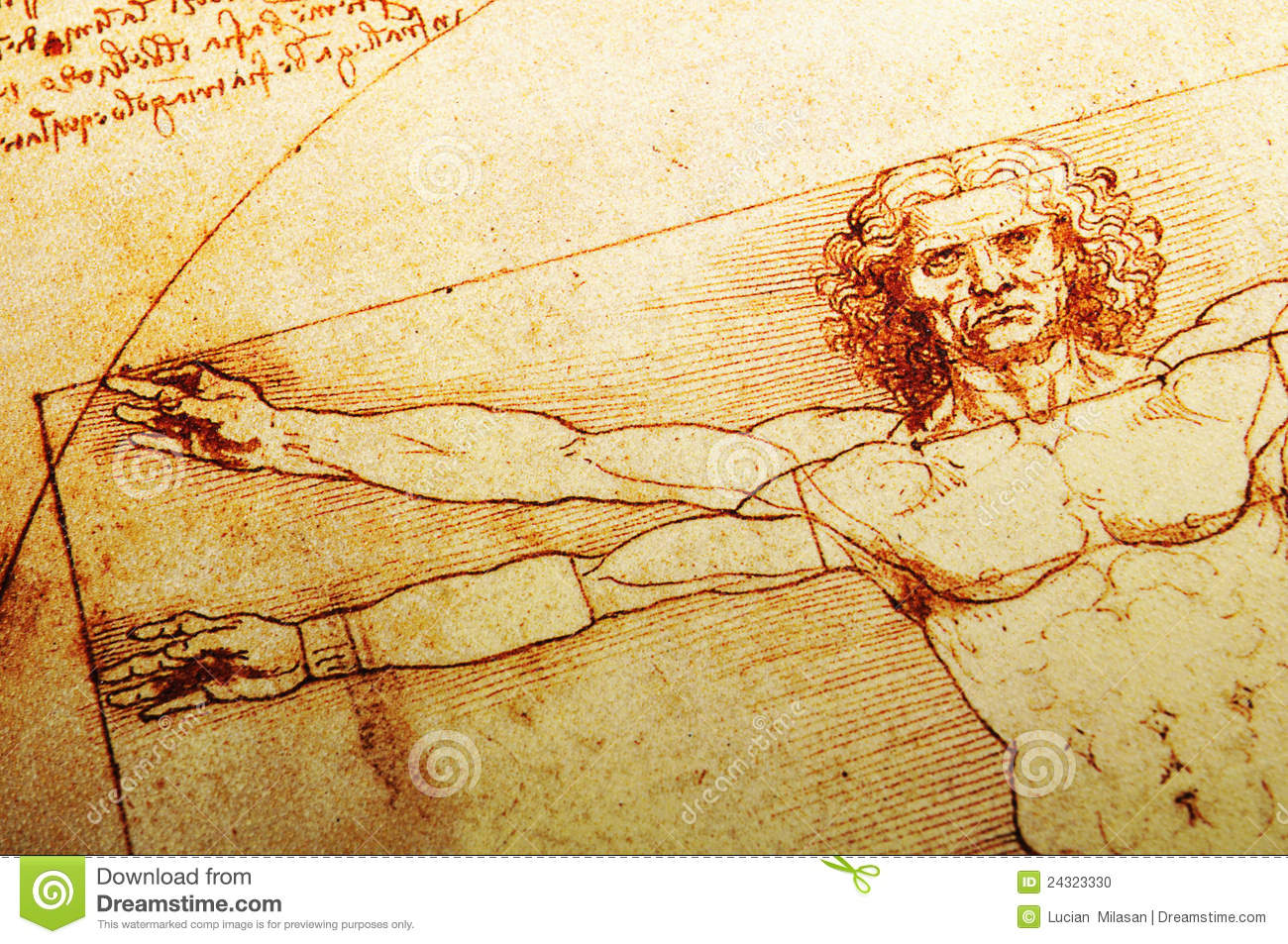 a look at the life of leonardo da vinci the greatest and most ingenious man that history has produce Leonardo's early life has been the subject of historical conjecture everyone acknowledged that this was true of leonardo da vinci, an artist of outstanding.