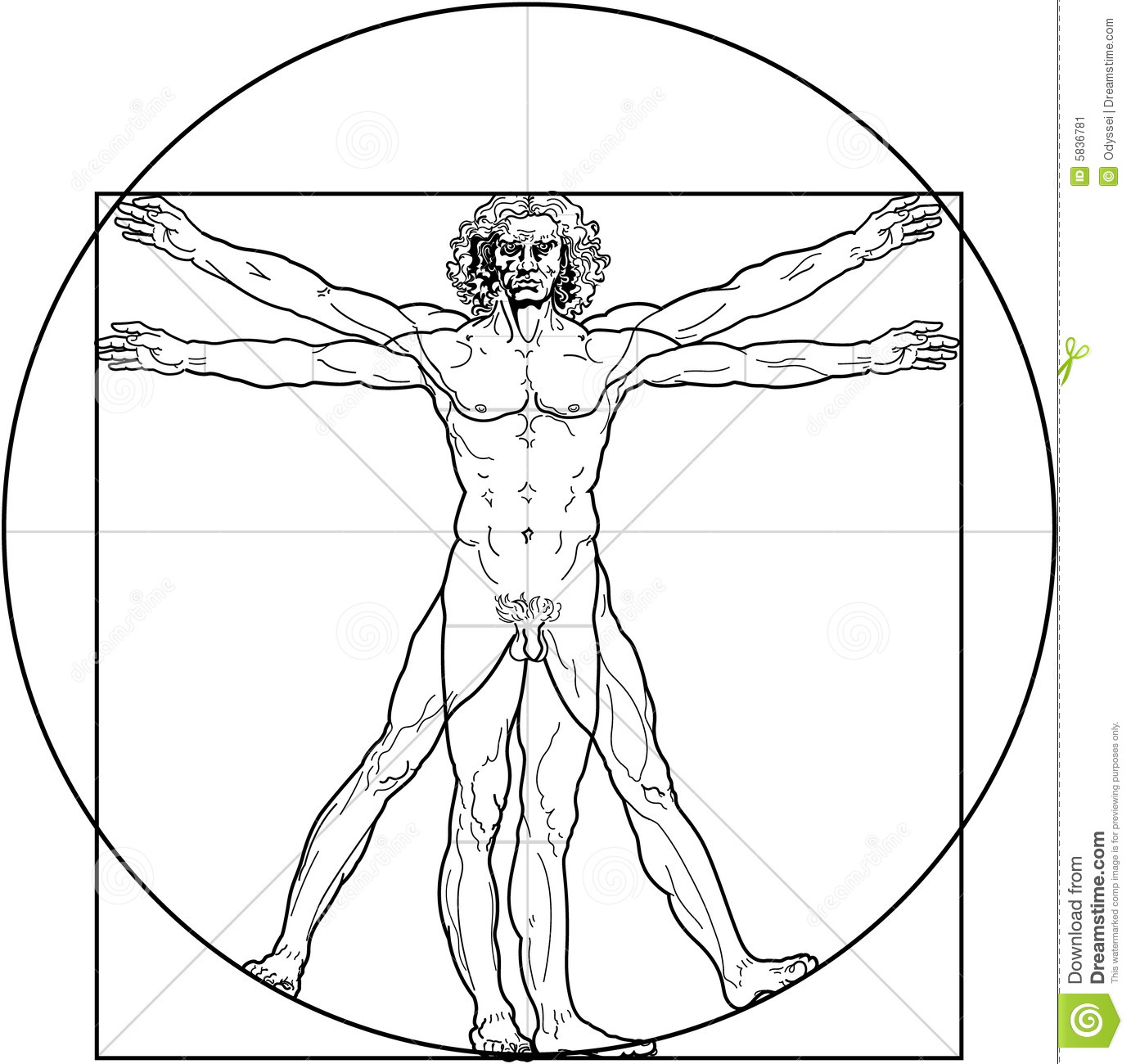 Stock Image Vitruvian Man Image5836781 moreover An Activity Priority Targets further D0 94 D1 96 D0 B0 D0 B3 D1 80 D0 B0 D0 BC D0 B0  D0 BF D1 80 D0 B5 D1 86 D0 B5 D0 B4 D0 B5 D0 BD D1 82 D1 96 D0 B2 furthermore Alignment likewise Meridians Toothbody Connection. on relationship diagram