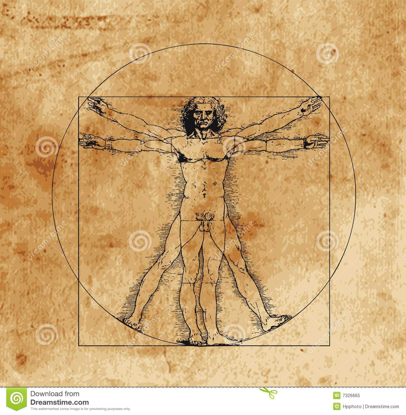 Vitruvian Stock Illustrations – 309 Vitruvian Stock Illustrations ...