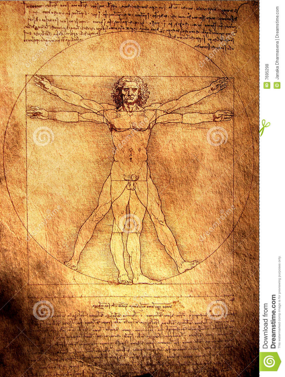 vitruvian man editorial stock photo illustration of texture 7695298. Black Bedroom Furniture Sets. Home Design Ideas
