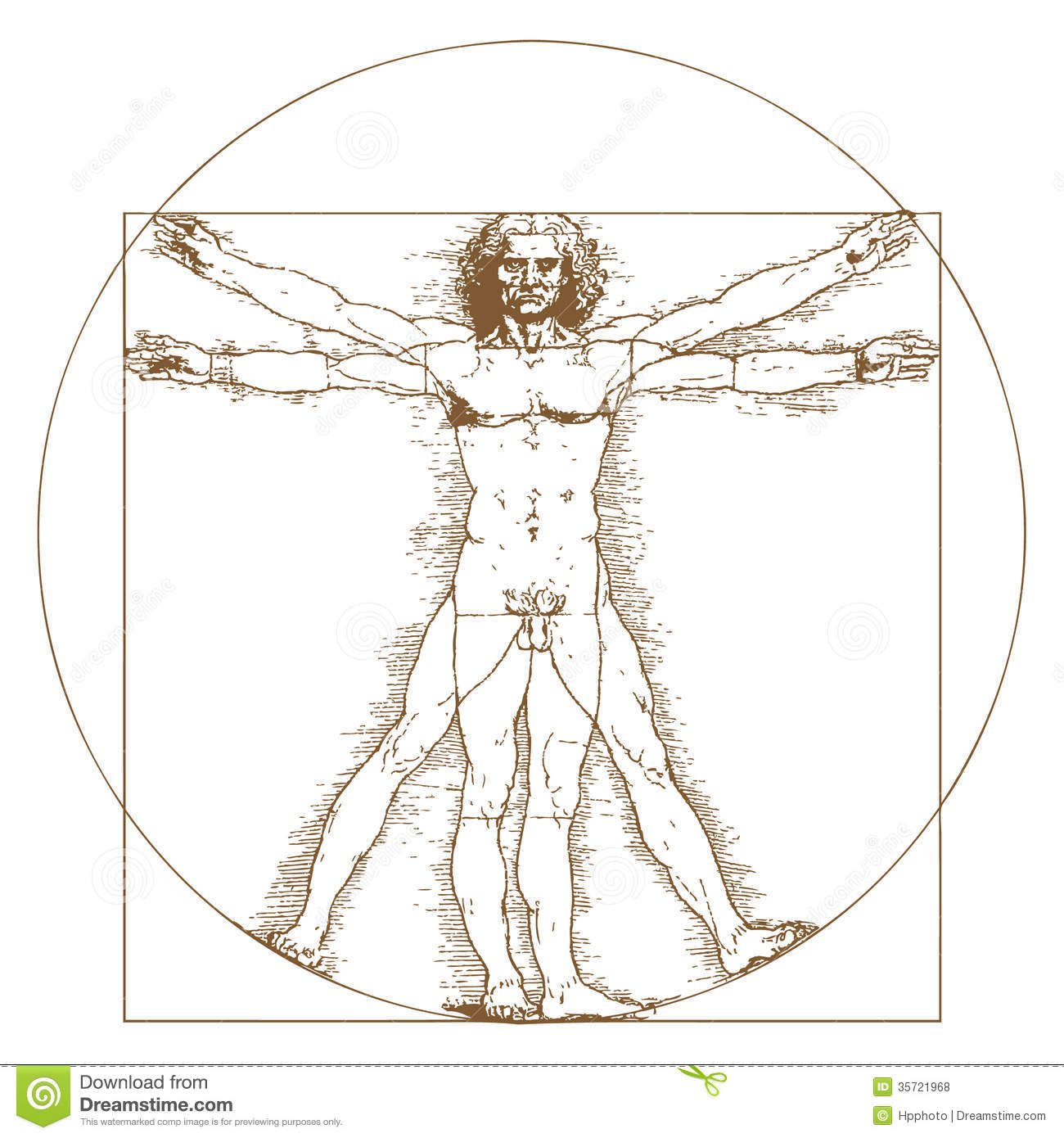 vitruvian man by leonardo da vinci editorial stock photo image 35721968. Black Bedroom Furniture Sets. Home Design Ideas