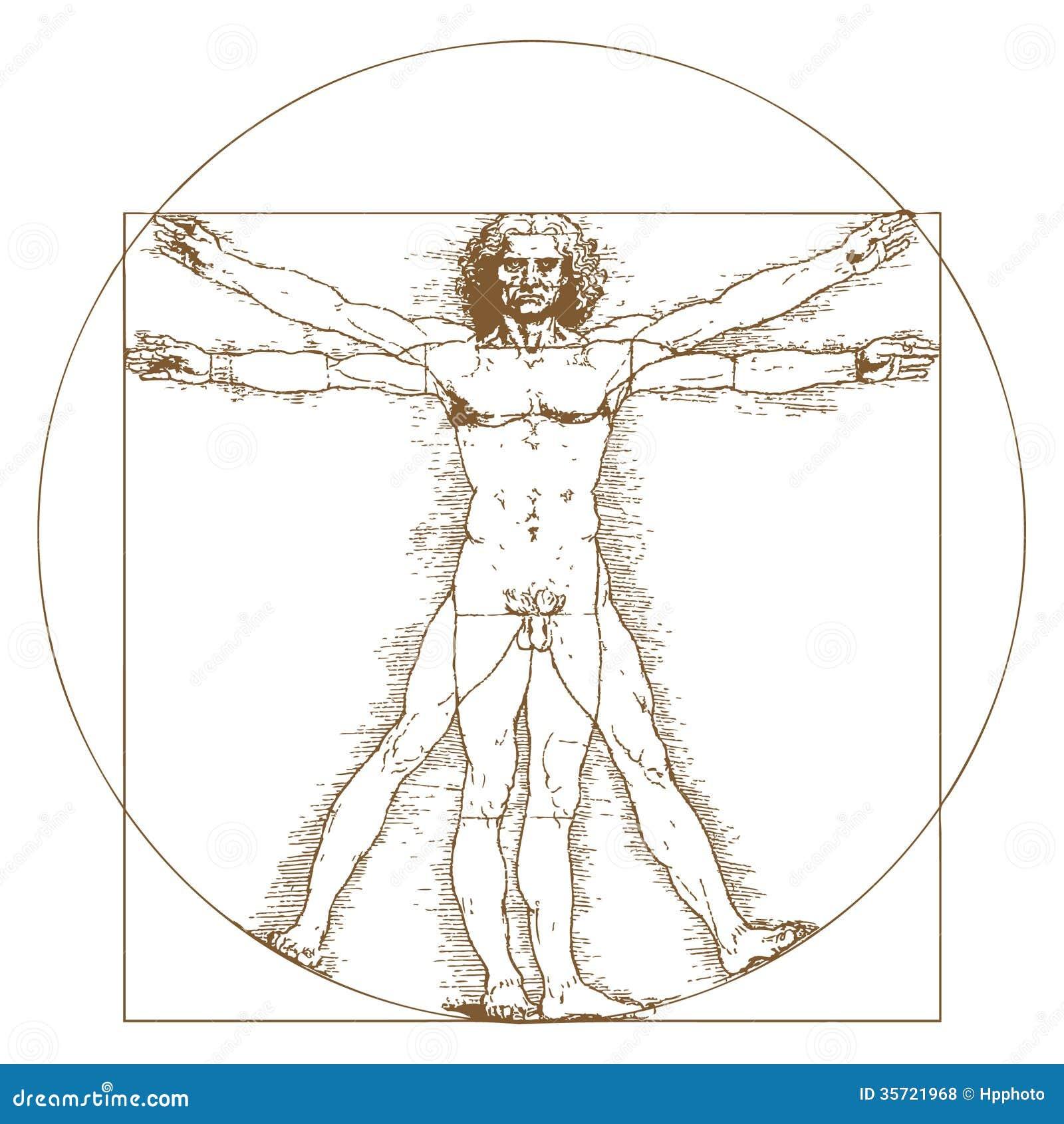 Vitruvian Man By Leonardo Da Vinci Editorial Stock Photo - Image ...
