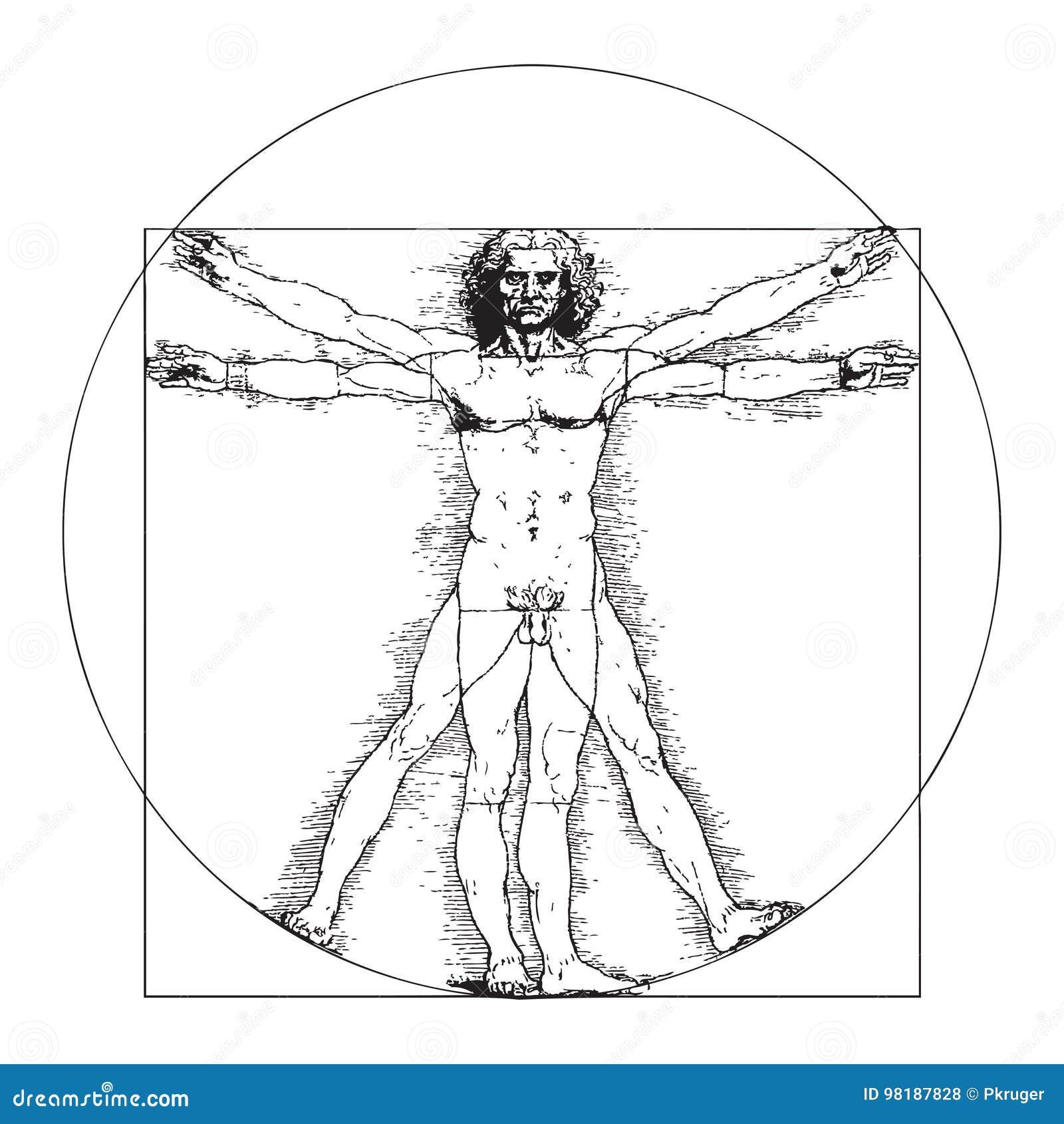 Vitruvian Man By Leonardo Da Vinci Editorial Stock Photo ...