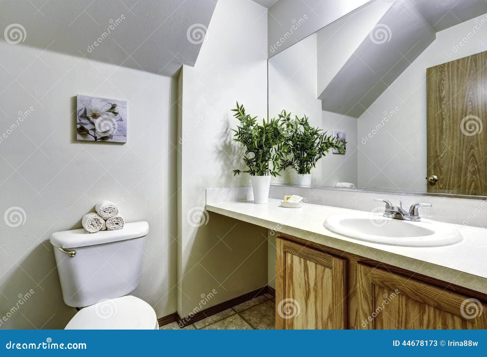 Vitt badrum med det välvde taket arkivfoto   bild: 44678173