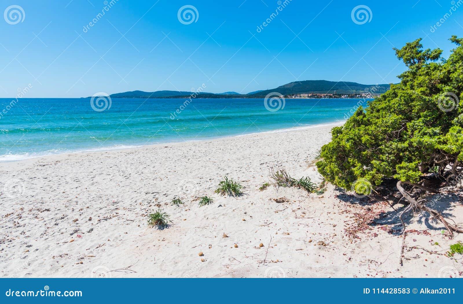 Vitt sand- och turkosvatten i Maria Pia sätter på land